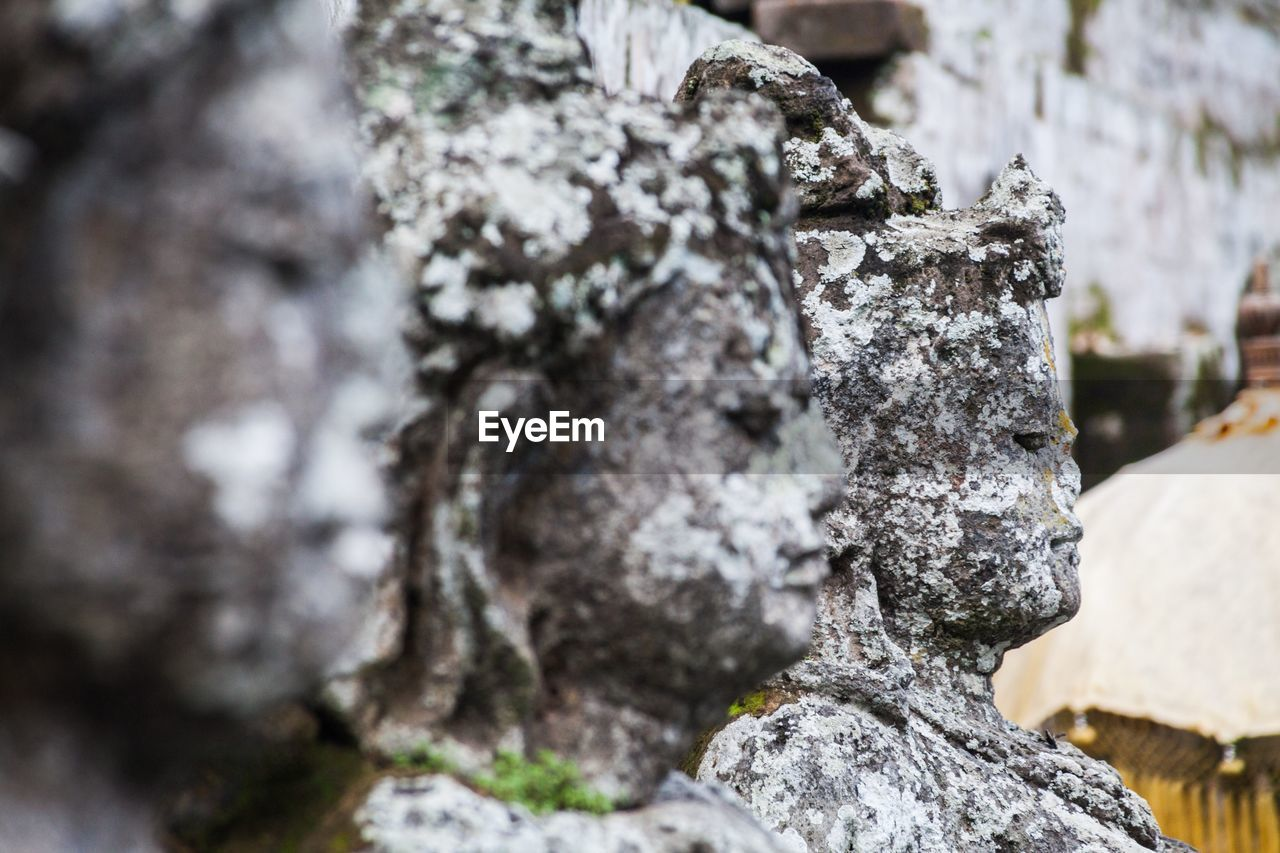day, no people, textured, solid, focus on foreground, rock, rough, close-up, nature, rock - object, outdoors, tree, selective focus, plant, pattern, tranquility, weathered, rock formation, lichen, growth