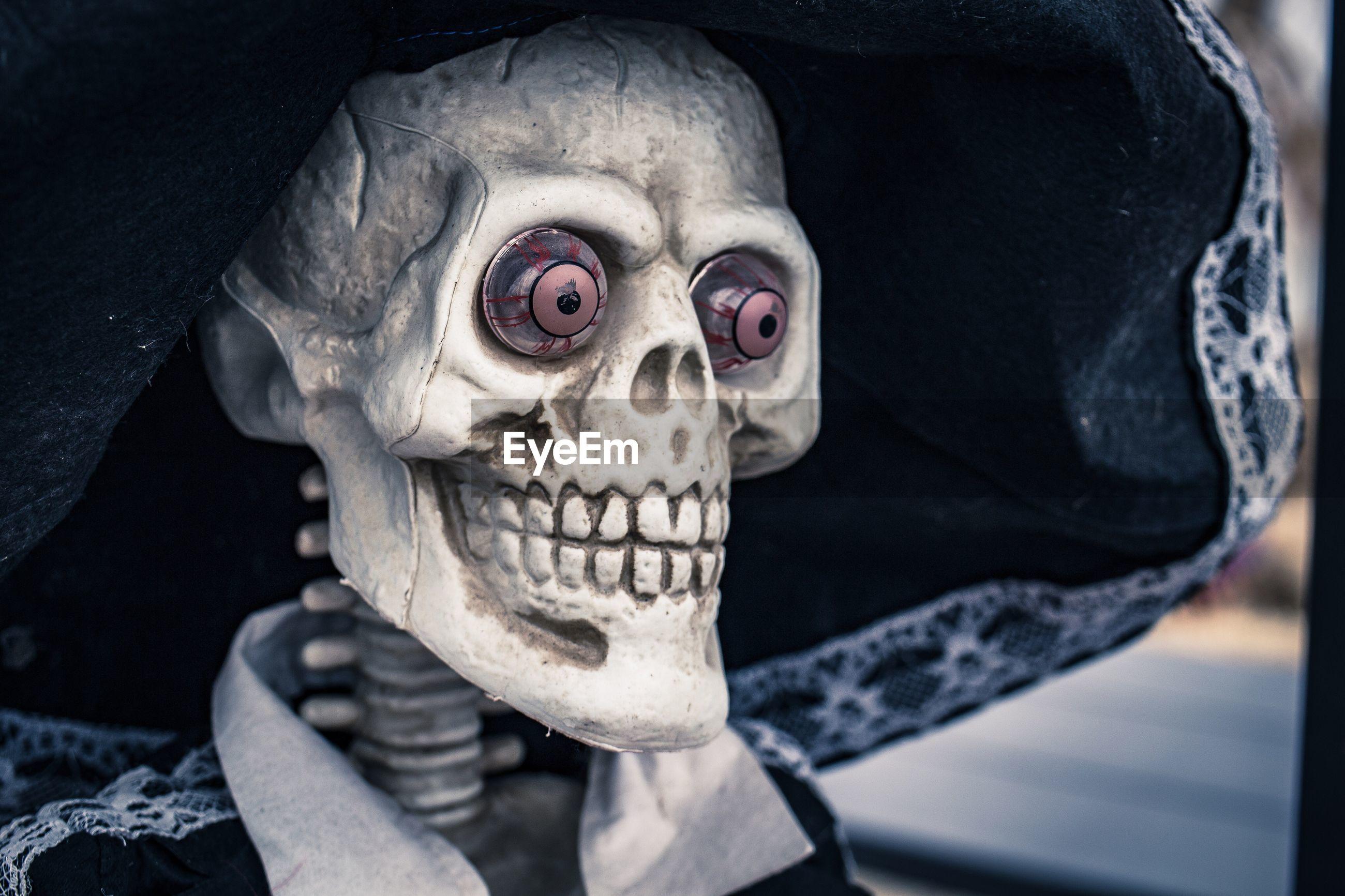 Portrait of human skeleton sculpture with large hat