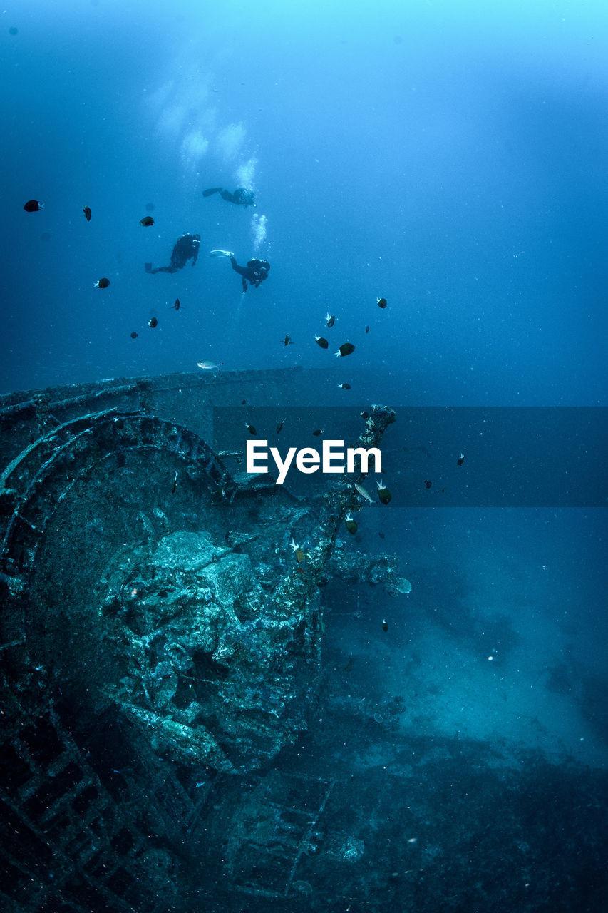 People Diving In Sea