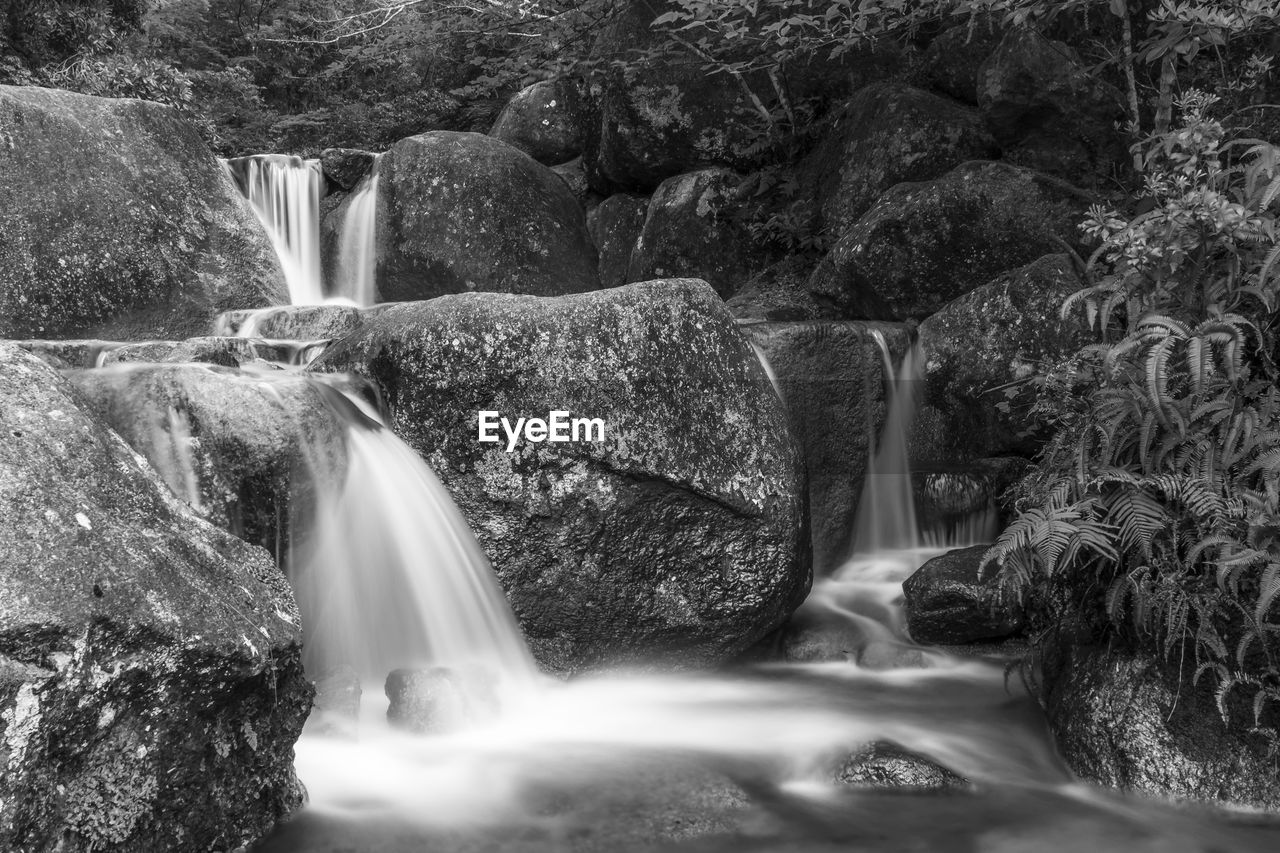 long exposure, water, flowing water, rock, waterfall, motion, scenics - nature, rock - object, solid, nature, beauty in nature, blurred motion, no people, flowing, tree, day, environment, outdoors, river, stream - flowing water, falling water, purity, power in nature, running water, rainforest