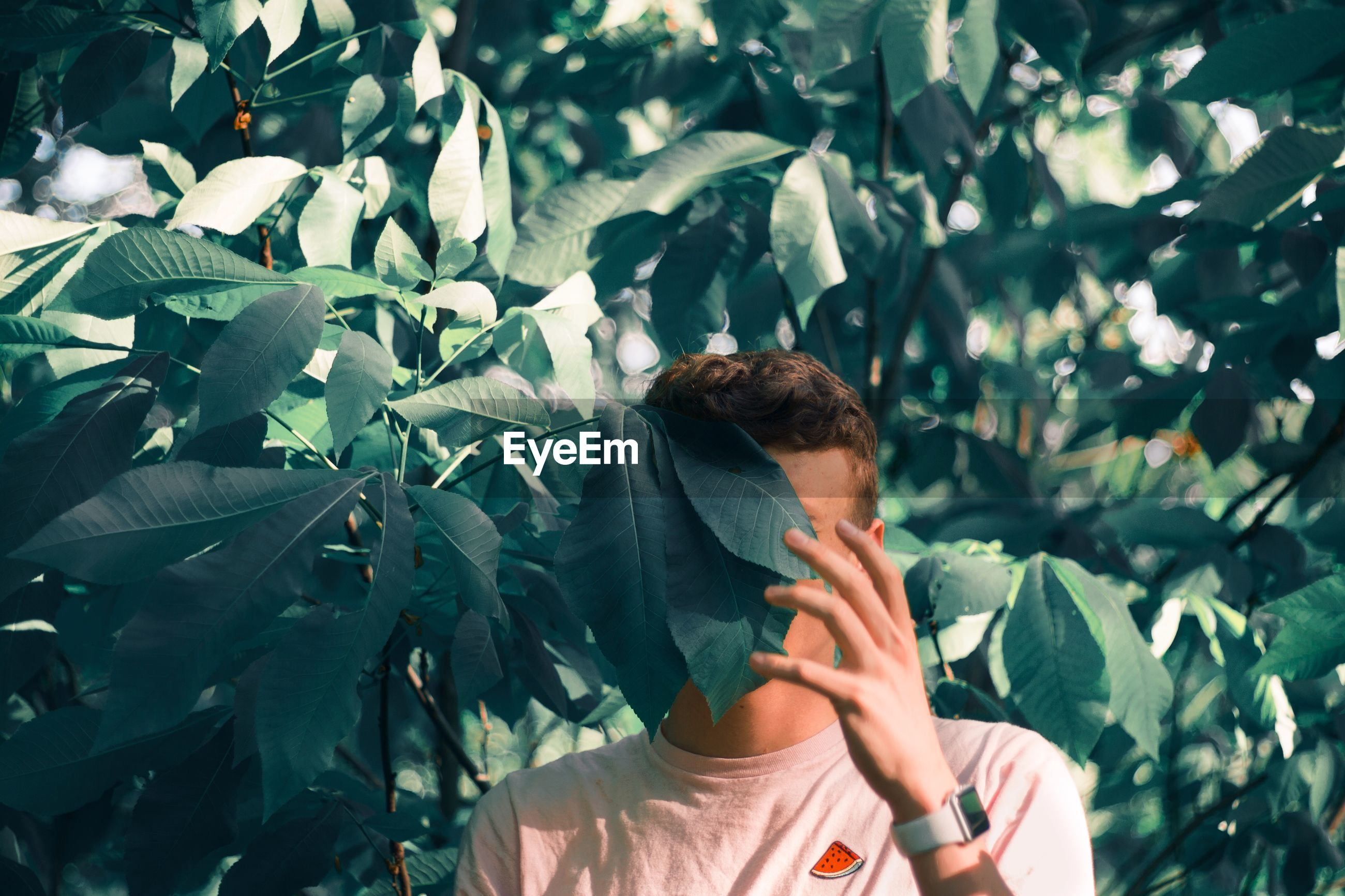 Young man hiding behind plants