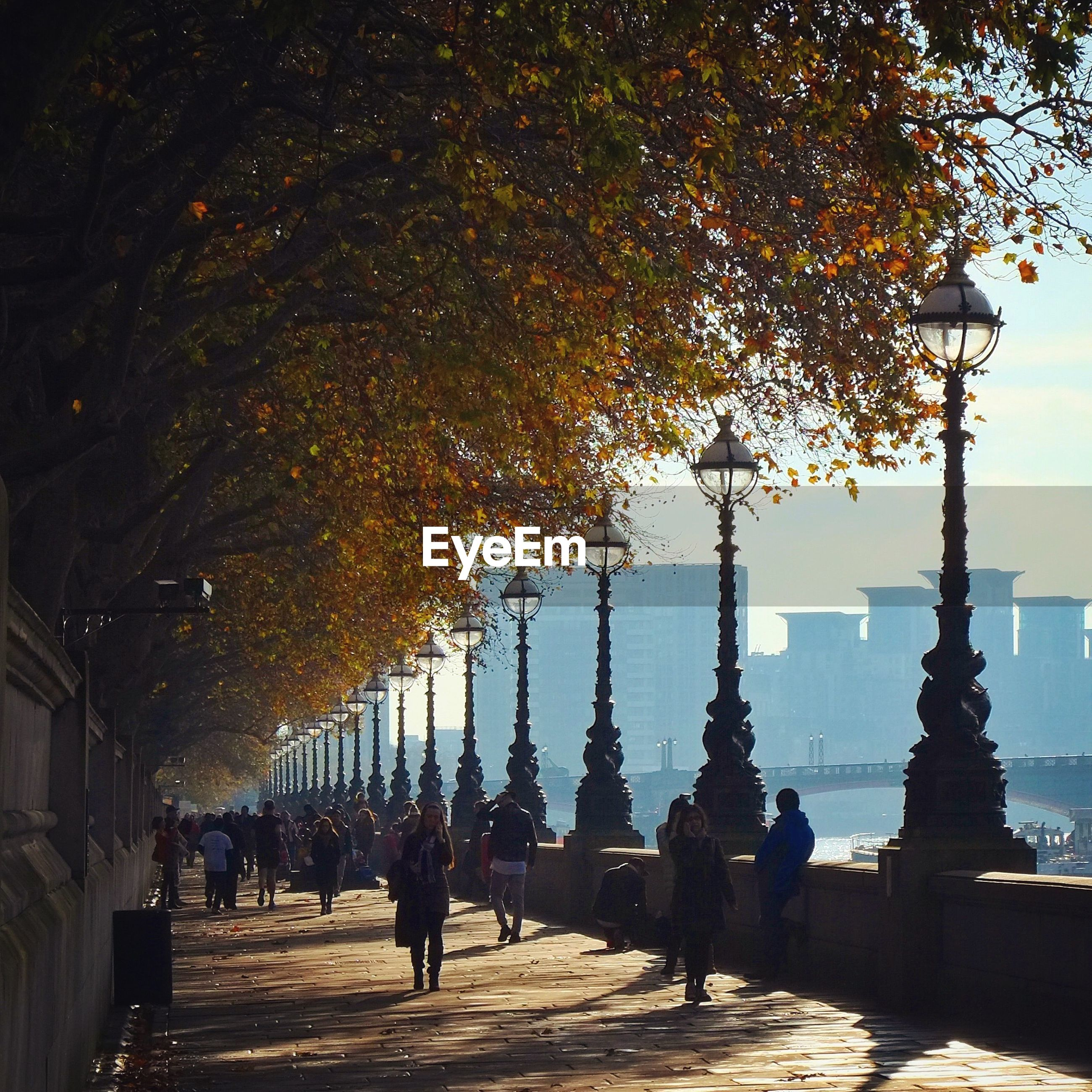 People walking on footpath during autumn