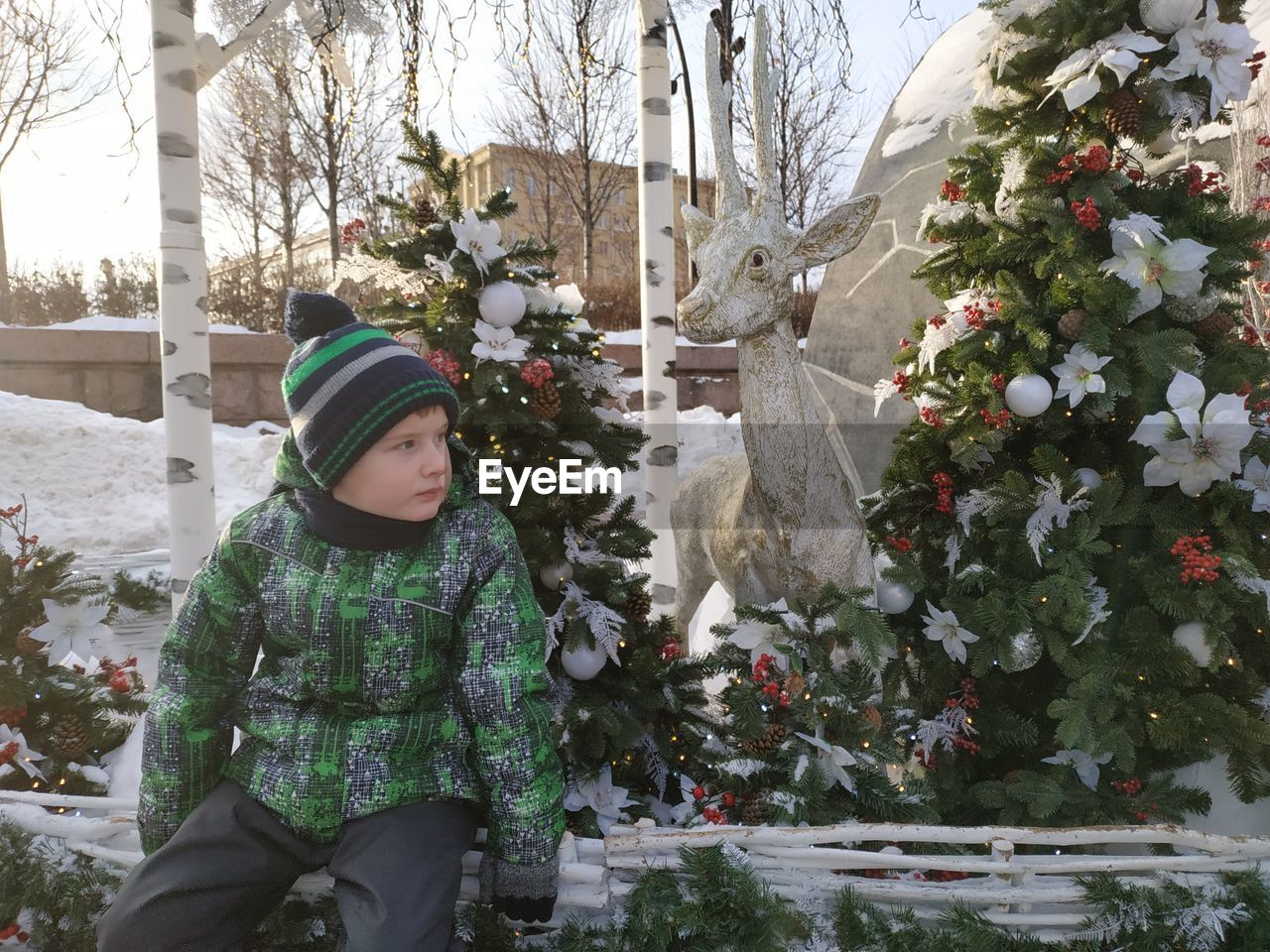 Cute boy sitting on fence against christmas tree during winter