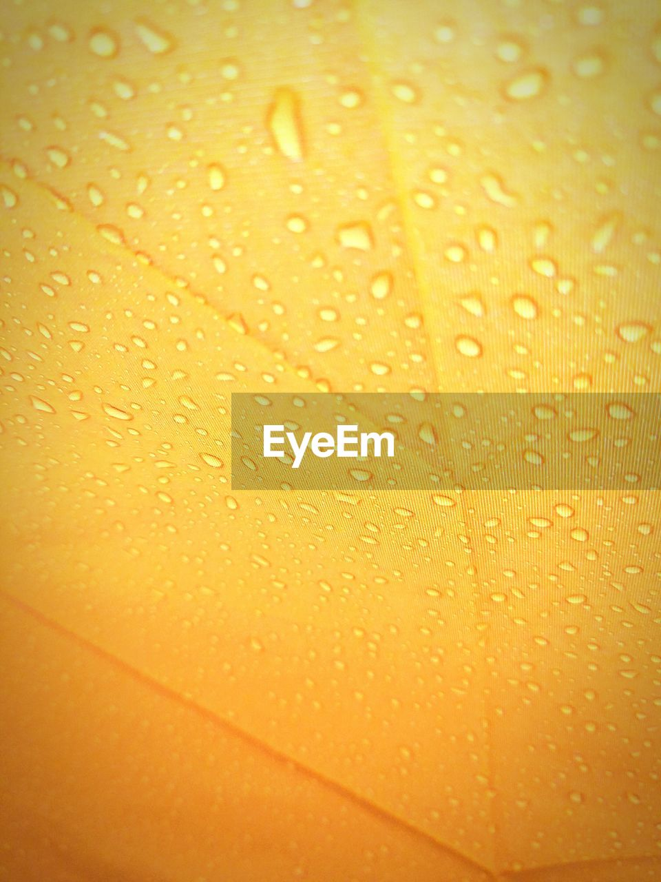 Full Frame Shot Of Drops On Yellow Leaf