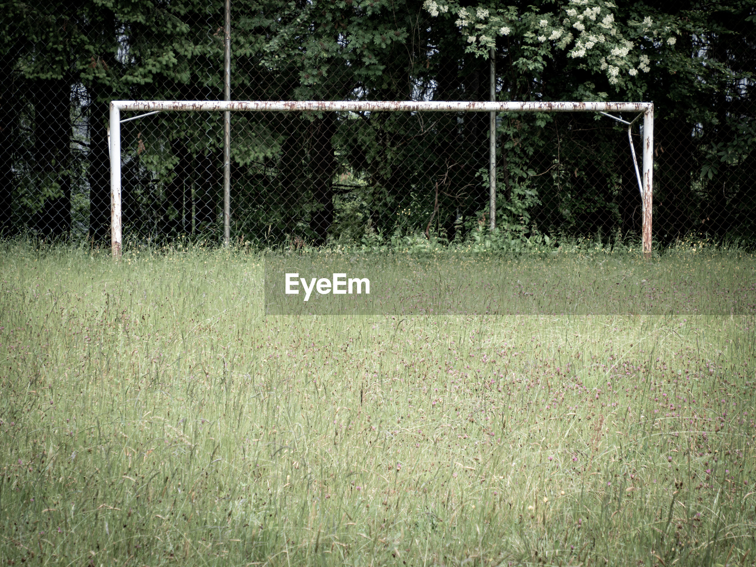 No soccer on this lost place field