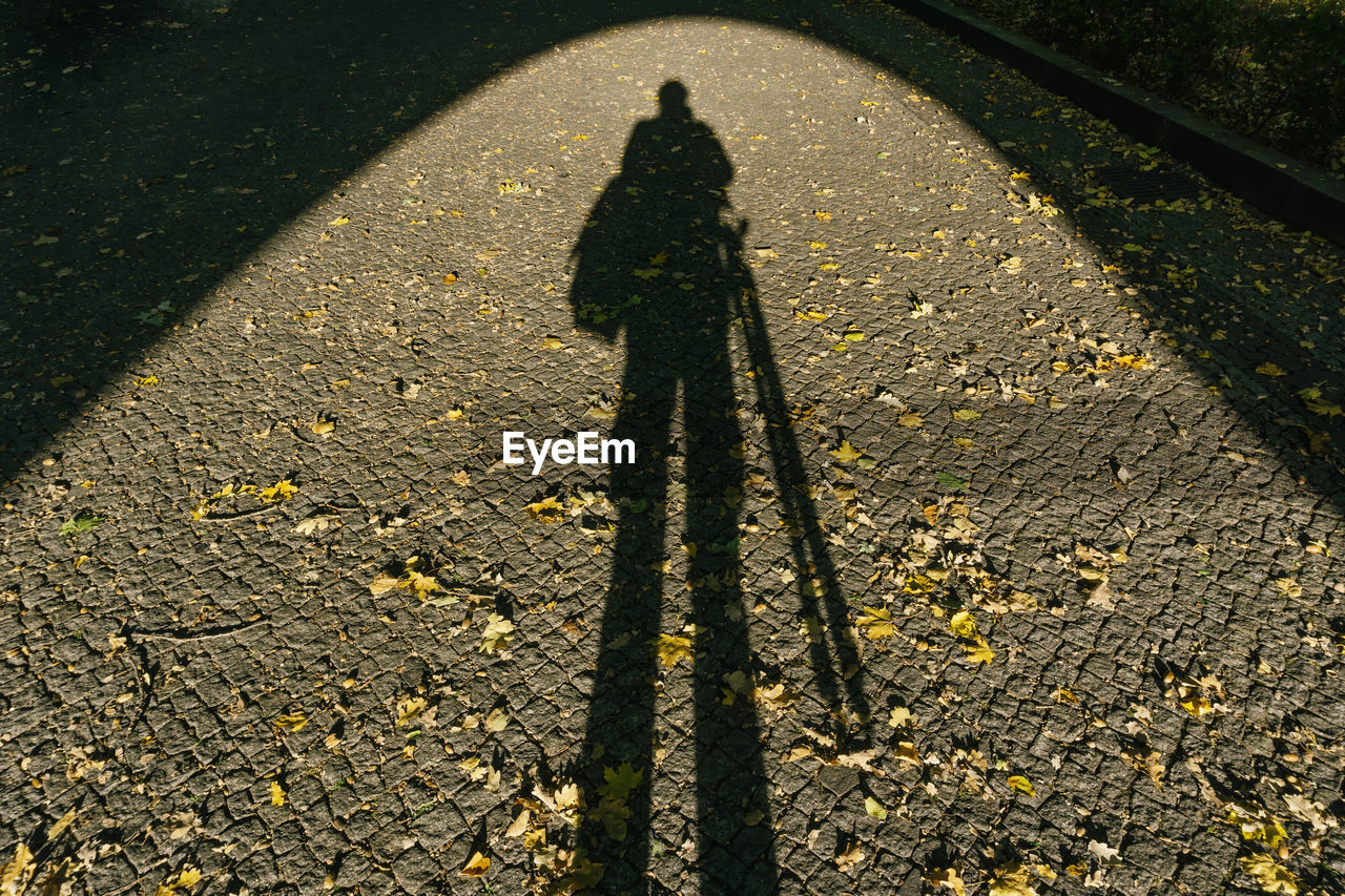 shadow, sunlight, one person, real people, high angle view, nature, transportation, day, focus on shadow, unrecognizable person, street, city, lifestyles, footpath, leisure activity, road, outdoors, yellow, standing, long shadow - shadow, change