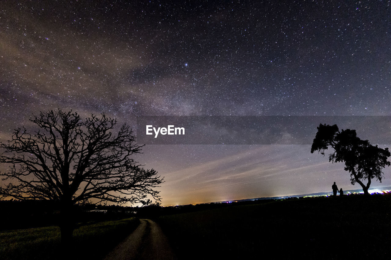 sky, tree, star - space, scenics - nature, space, astronomy, plant, beauty in nature, night, nature, silhouette, tranquility, tranquil scene, star, field, star field, galaxy, bare tree, land, outdoors, no people
