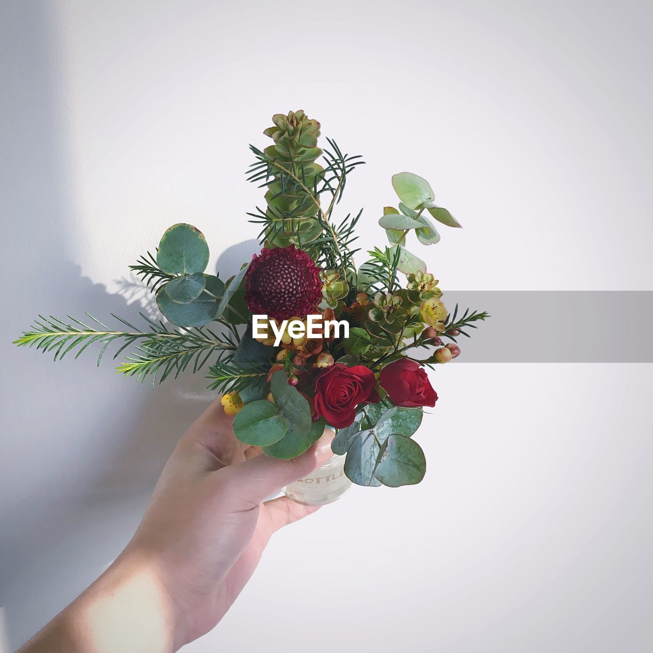 Close-Up Of Hand Holding Flowers Against White Background