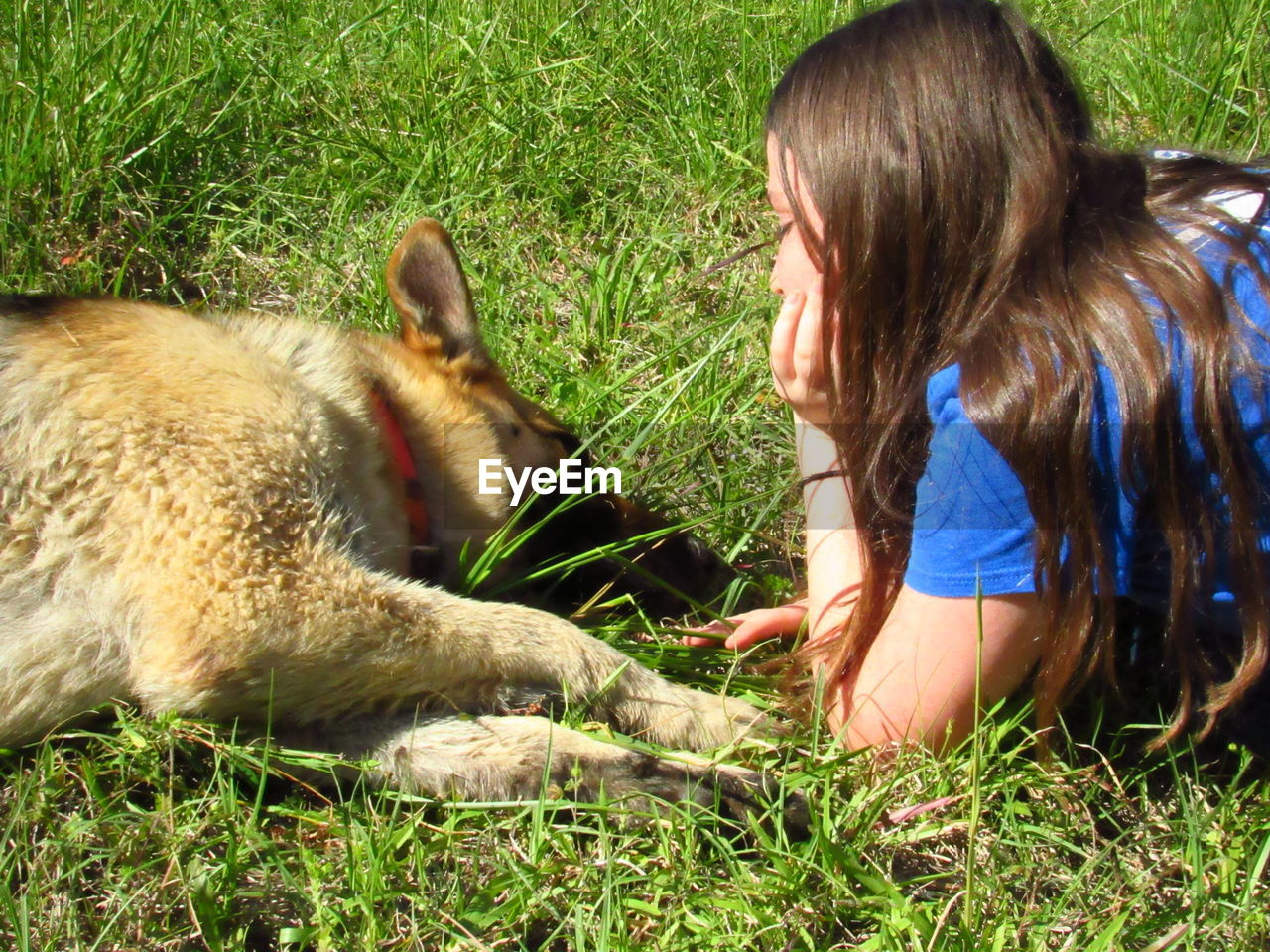 Girl looking at dog while lying on grass