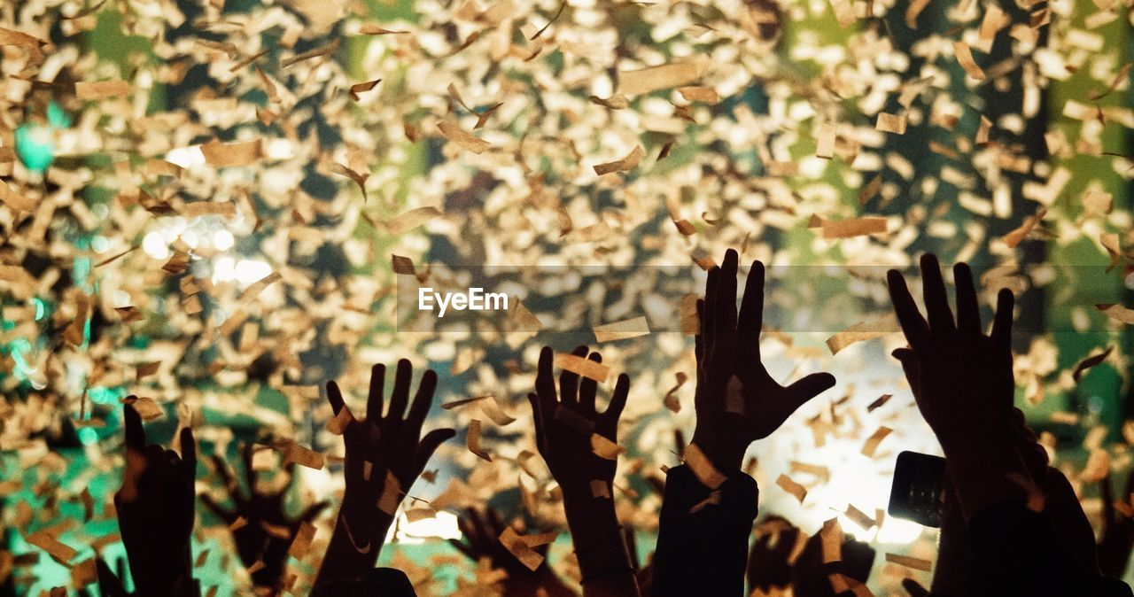 People Throwing Confetti In Mid-Air During Celebration