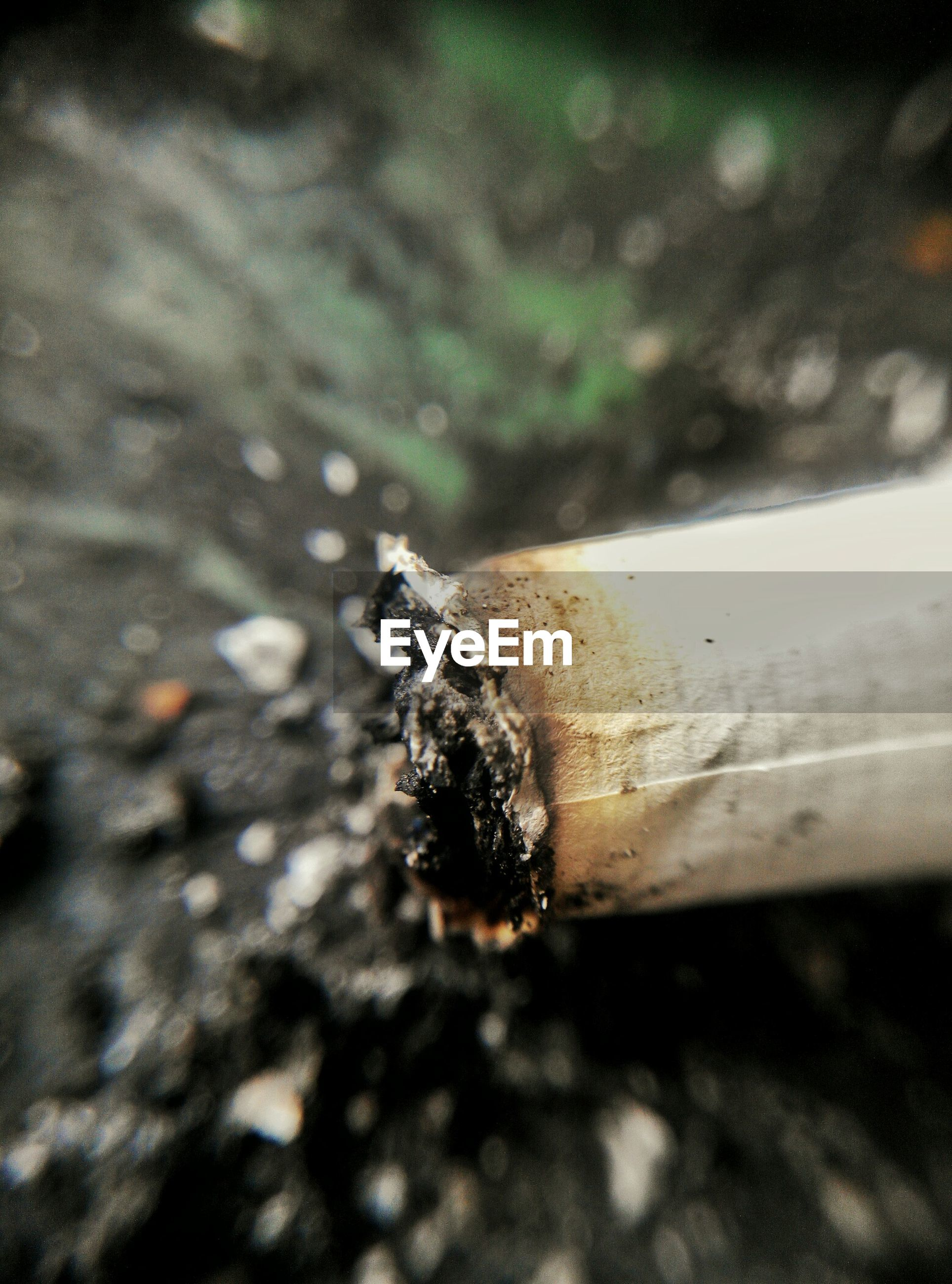 Close-up view of cigarette