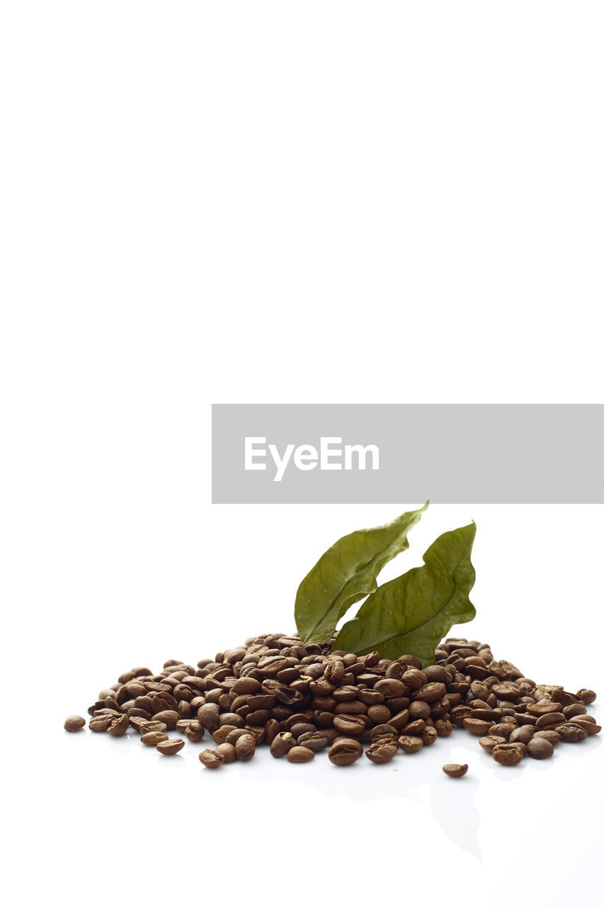 Close-up of coffee beans with leaf over white background