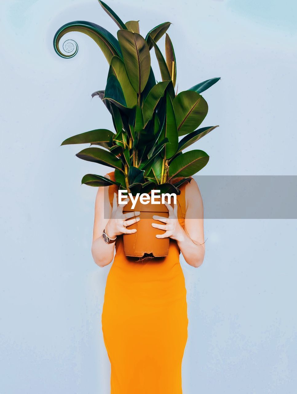 one person, holding, real people, human hand, women, lifestyles, hand, plant, green color, leisure activity, plant part, nature, standing, leaf, human body part, orange color, adult, body part, unrecognizable person, finger, obscured face