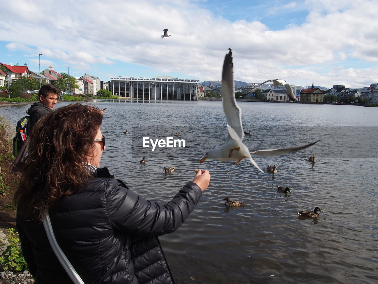 People Looking At Birds Against River In City