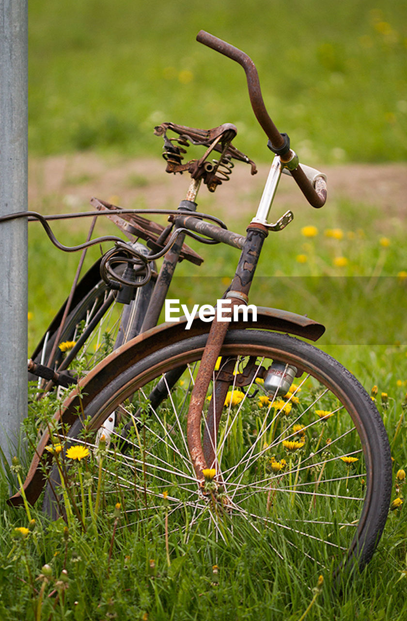 bicycle, transportation, mode of transport, stationary, metal, land vehicle, day, grass, no people, outdoors, rusty, green color, wheel, bicycle rack, bicycle basket, old-fashioned, close-up, nature