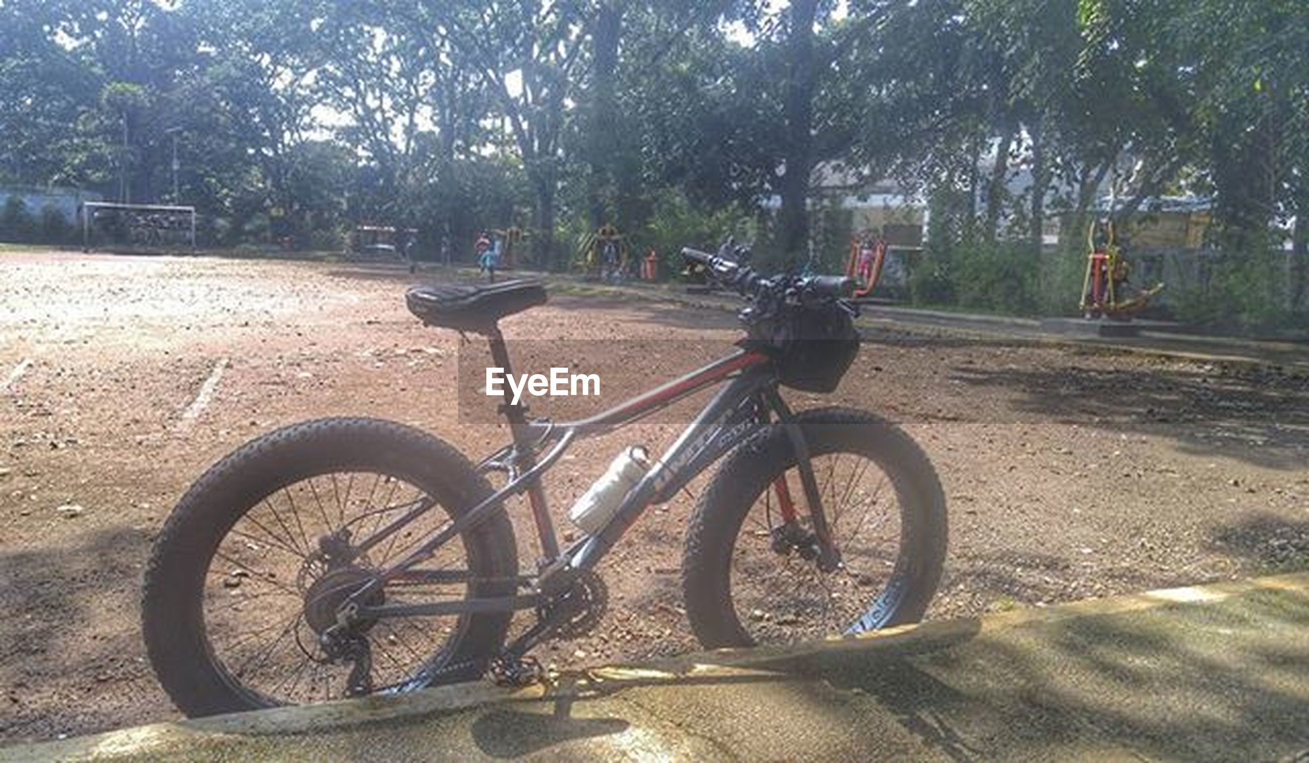 bicycle, land vehicle, transportation, mode of transport, stationary, parking, tree, parked, sunlight, street, wheel, day, shadow, outdoors, no people, nature, road, absence, footpath, tranquility