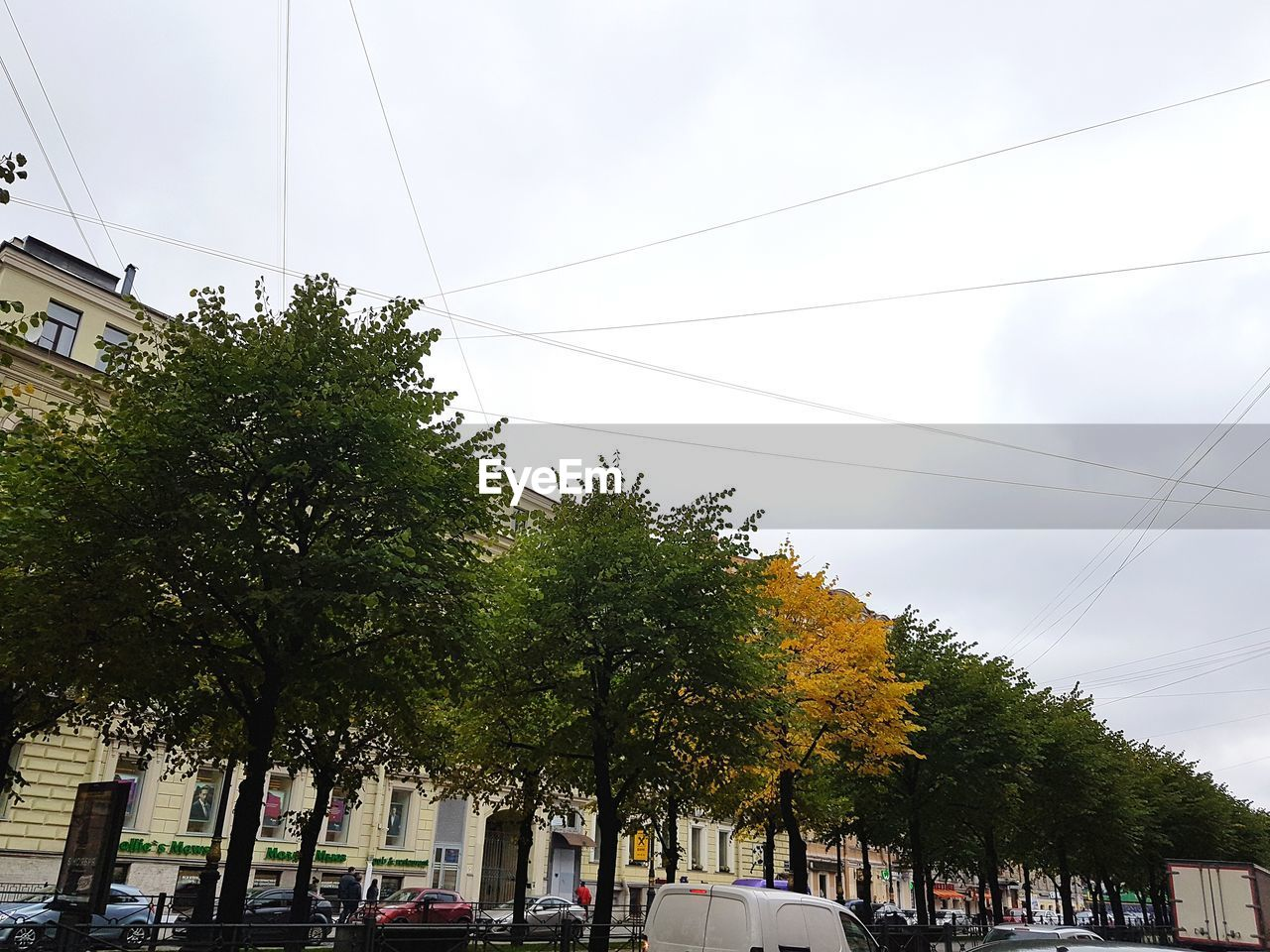 tree, sky, plant, cable, transportation, mode of transportation, nature, city, motor vehicle, architecture, day, car, electricity, street, power line, building exterior, land vehicle, road, built structure, cloud - sky, outdoors, no people