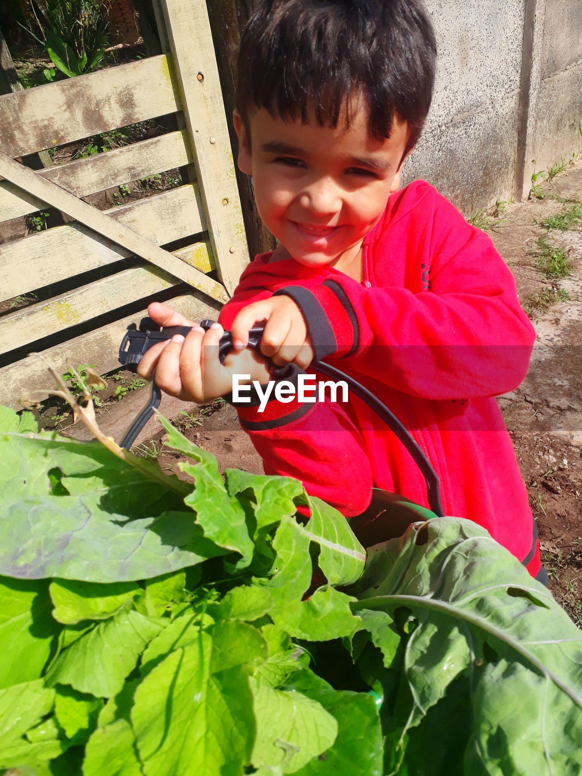 Portrait of boy standing by leaf vegetables
