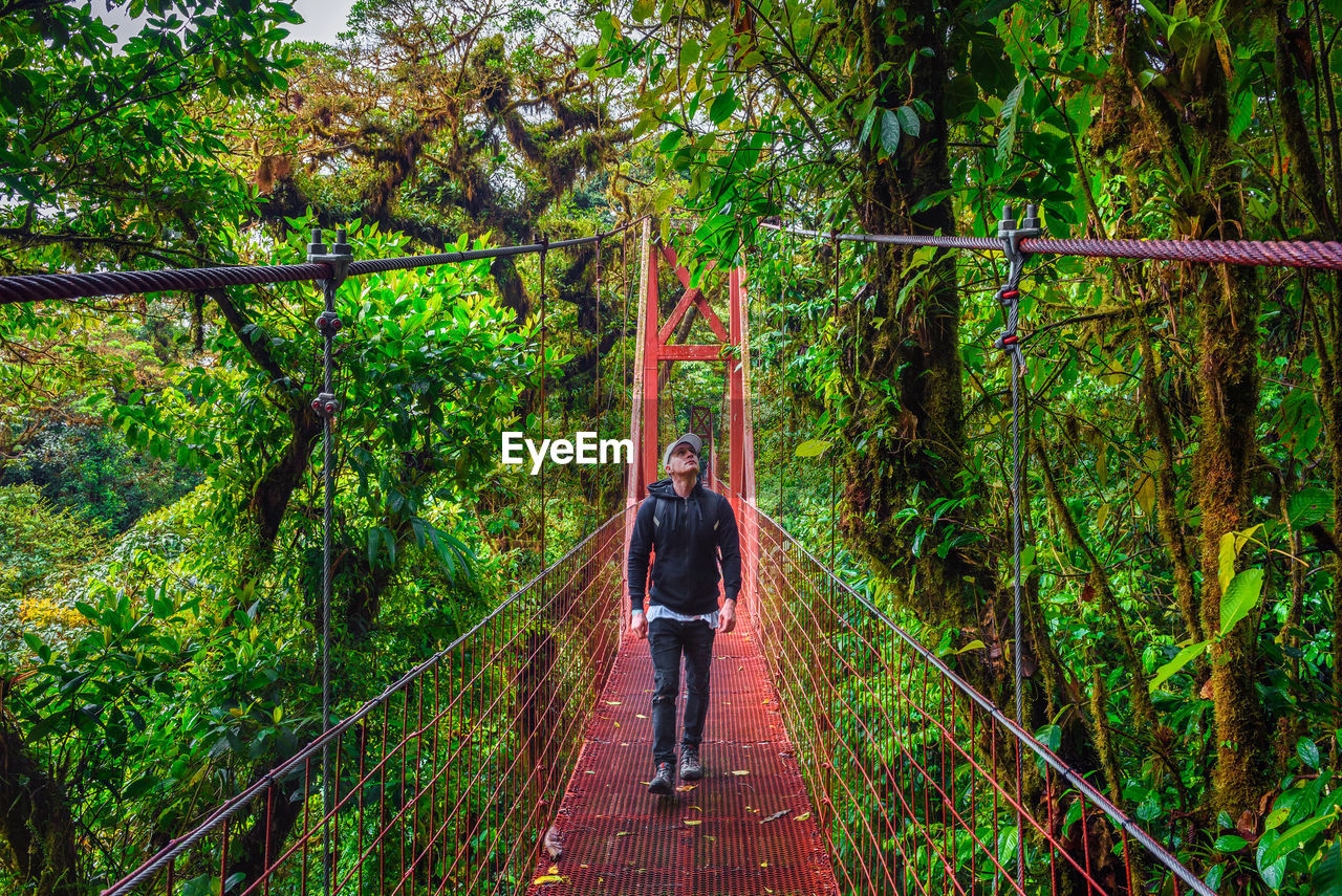 REAR VIEW OF PERSON STANDING ON FOOTBRIDGE IN FOREST