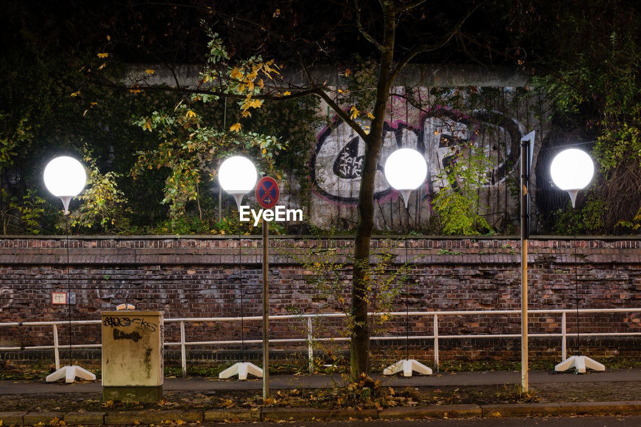 illuminated, lighting equipment, tree, no people, night, hanging, outdoors, animal themes, nature, mammal