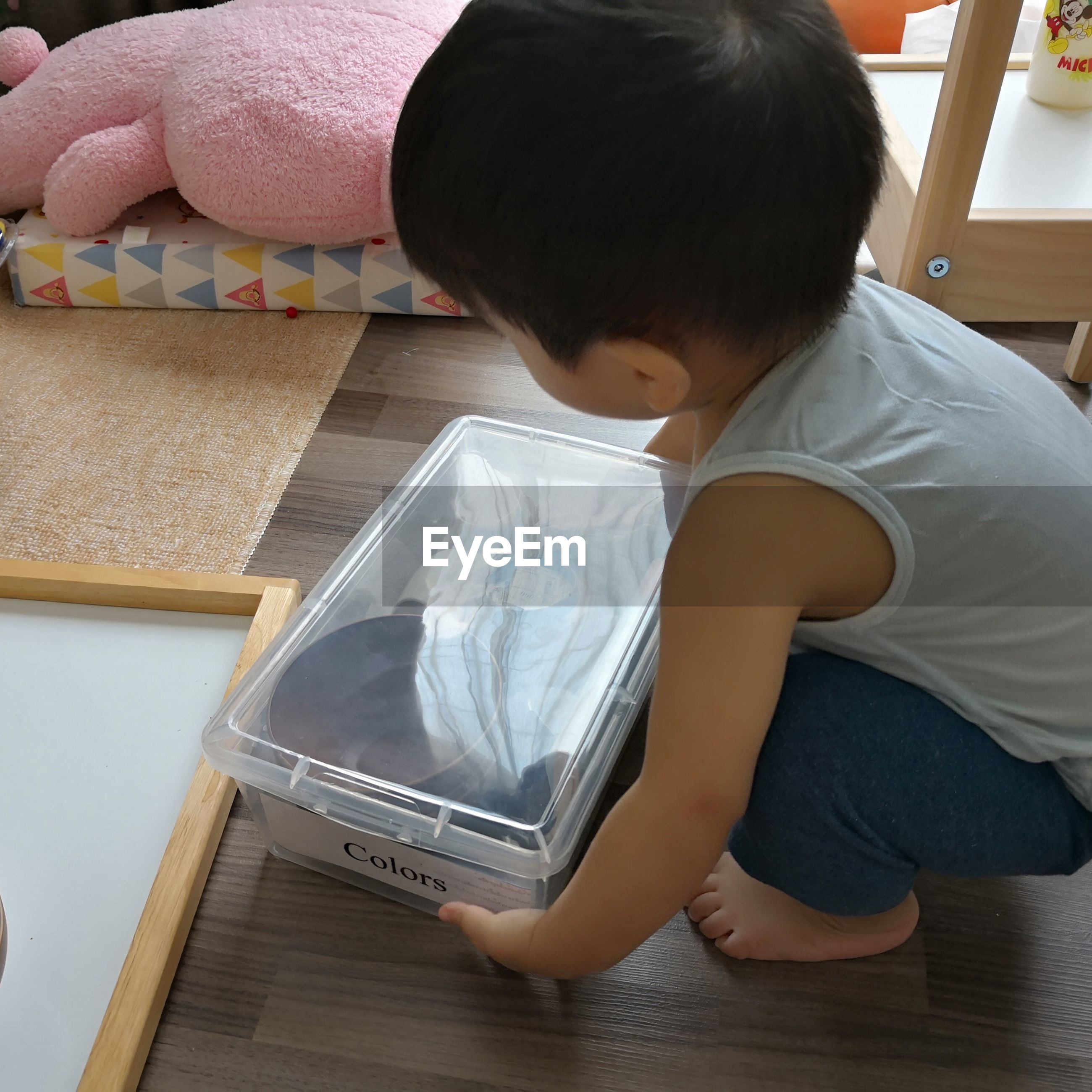 High angle view of boy holding plastic box at home