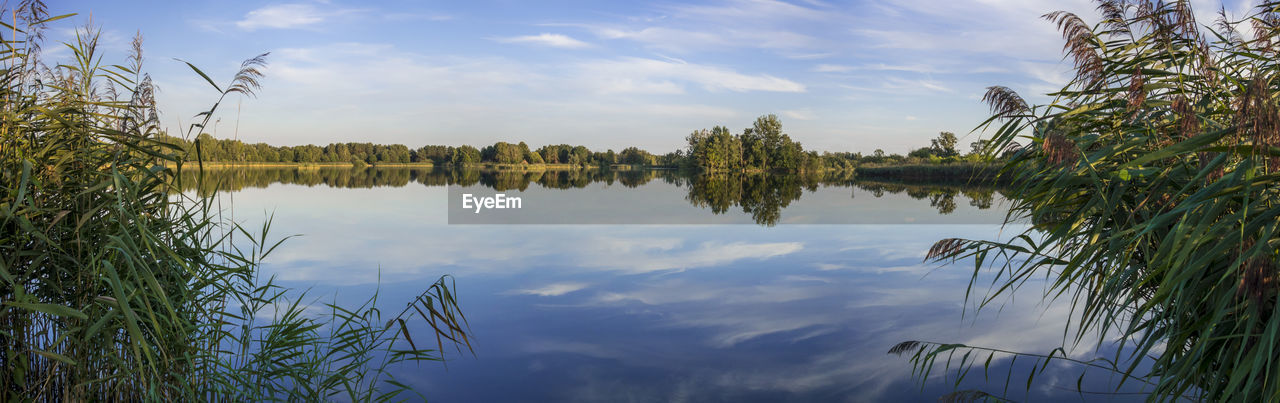 reflection, sky, lake, water, cloud - sky, nature, standing water, tranquil scene, outdoors, tranquility, growth, no people, day, beauty in nature, scenics, tree, waterfront, plant