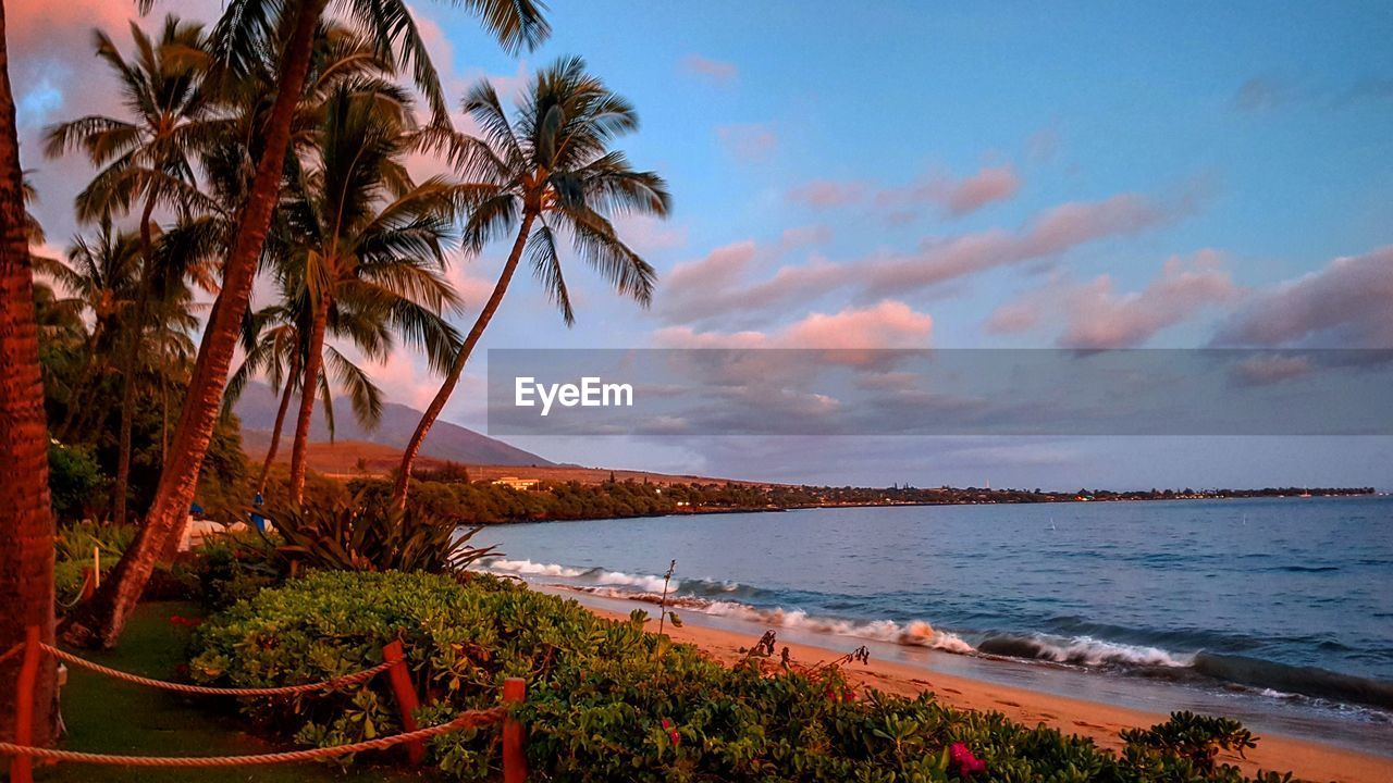 sea, water, scenics, beauty in nature, sky, nature, palm tree, tranquil scene, tranquility, outdoors, beach, cloud - sky, tree, no people, day, horizon over water, mountain