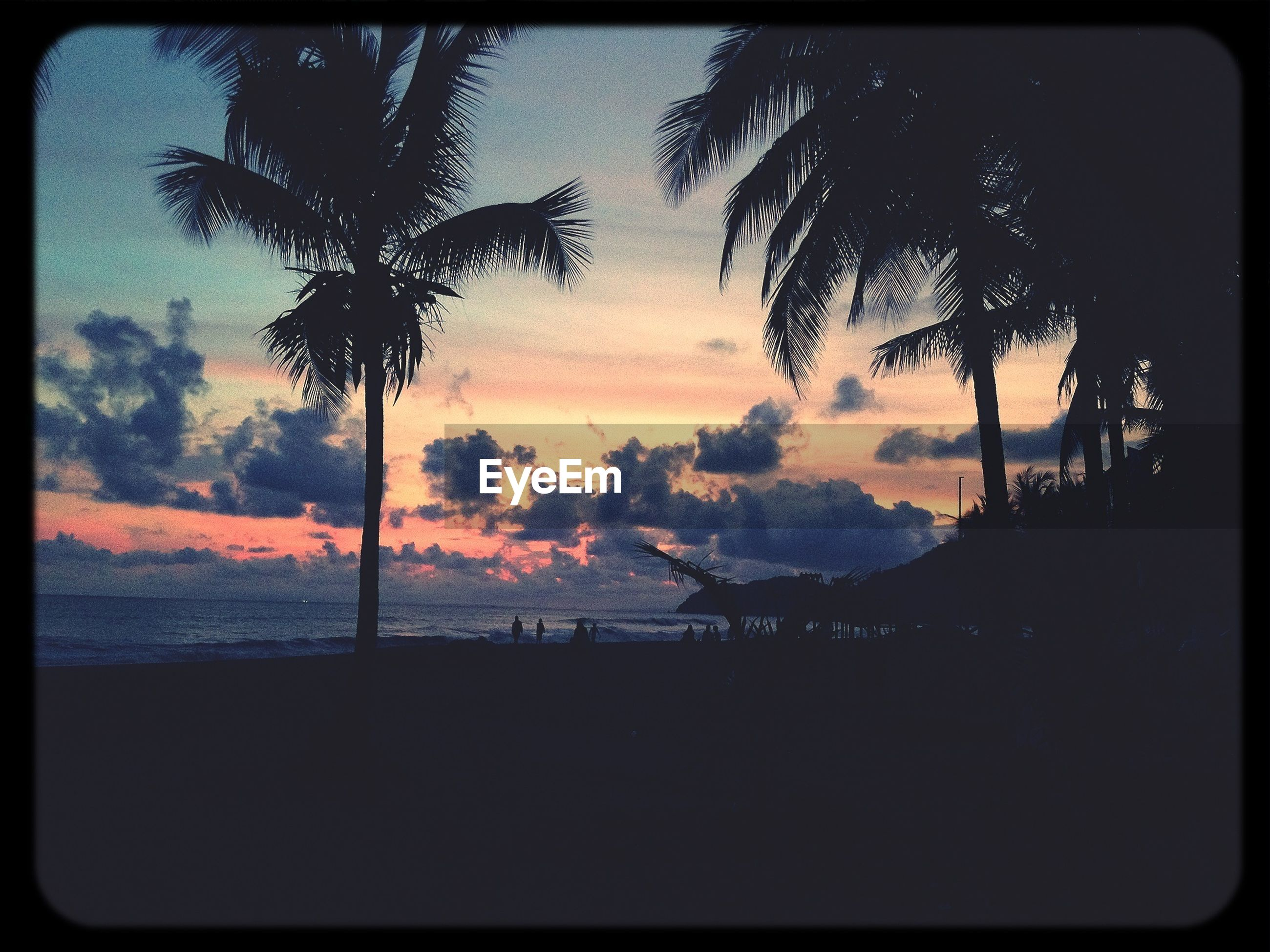 transfer print, sunset, silhouette, auto post production filter, palm tree, sky, tree, tranquility, sea, scenics, tranquil scene, water, beauty in nature, nature, horizon over water, cloud - sky, idyllic, dusk, beach, orange color