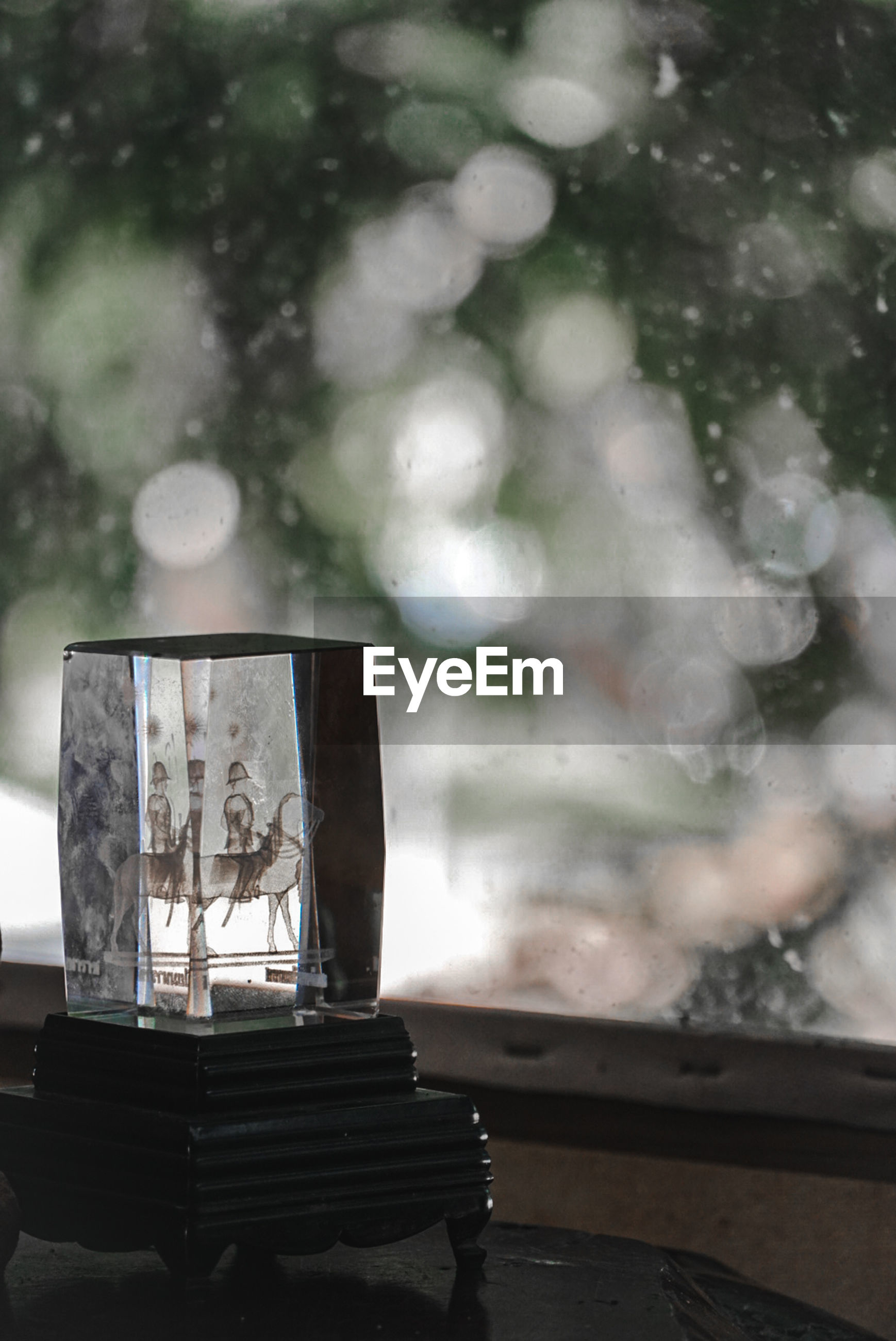 CLOSE-UP OF GLASS WINDOW ON TABLE AGAINST TREES