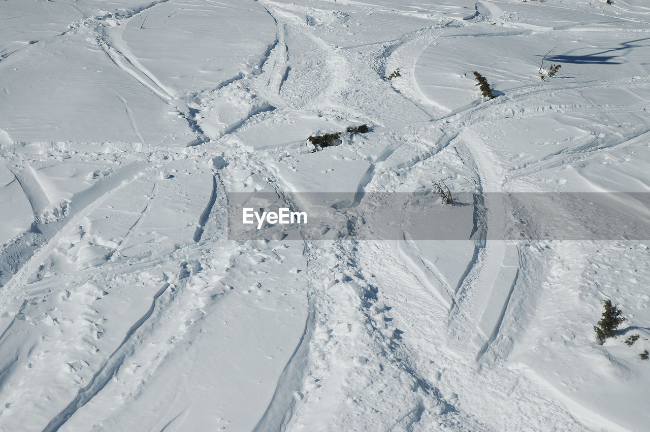 High Angle View Of Ski Tracks On Snow Field