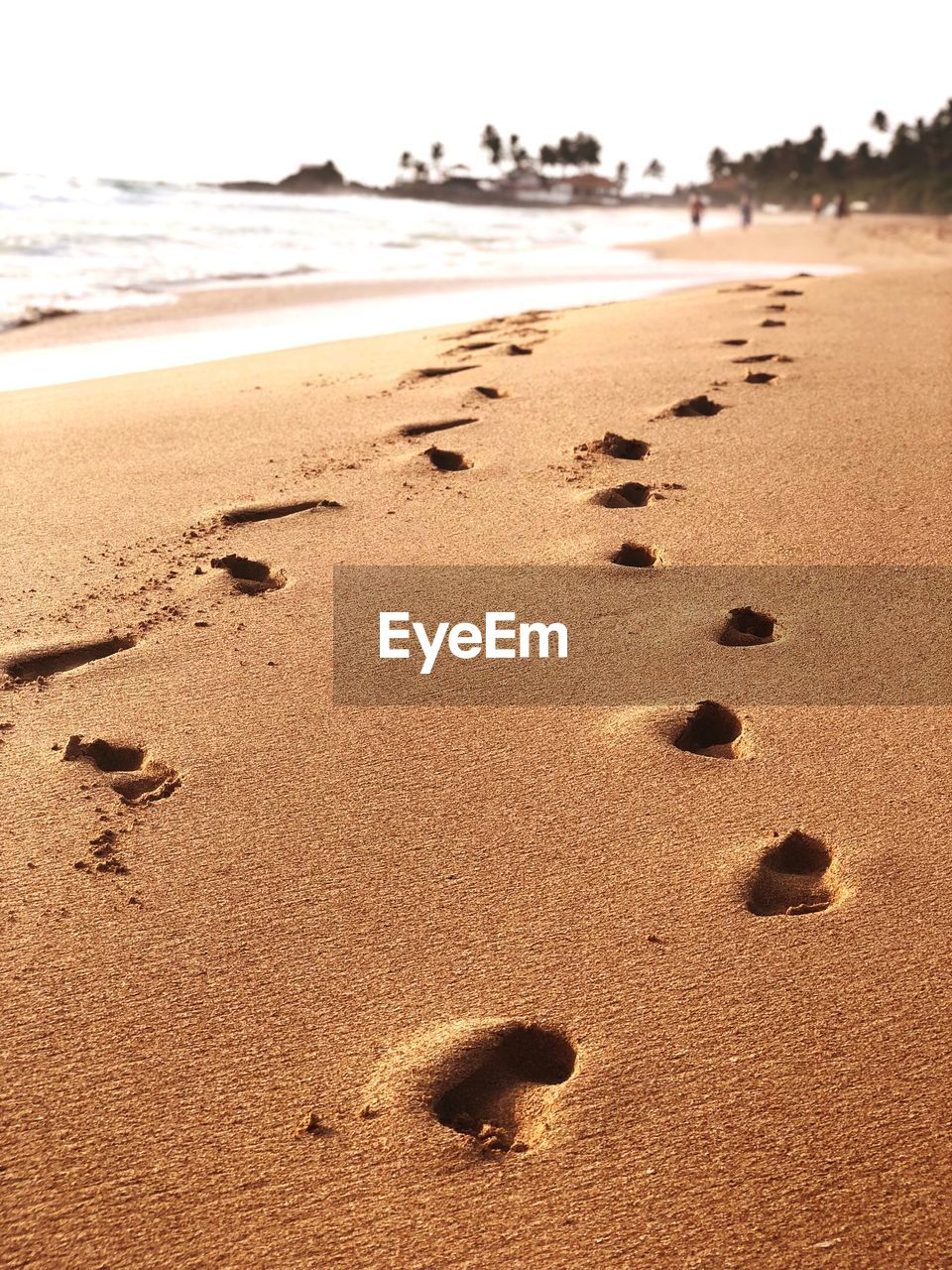 land, beach, sand, footprint, nature, water, sea, tranquility, print, no people, day, track - imprint, beauty in nature, sky, sunlight, focus on foreground, tranquil scene, scenics - nature, outdoors, surface level