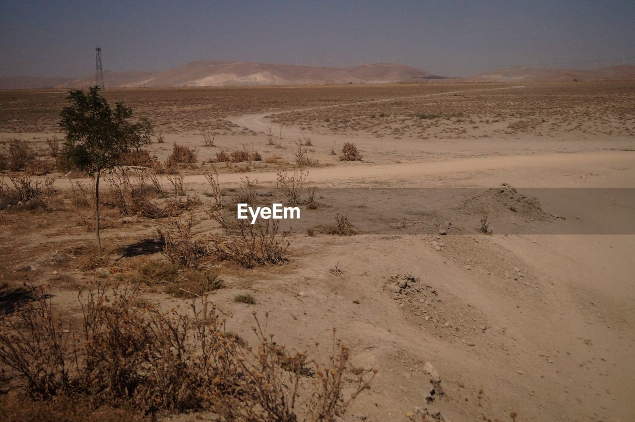 environment, landscape, scenics - nature, tranquility, tranquil scene, land, desert, non-urban scene, beauty in nature, sky, nature, no people, mountain, day, sand, arid climate, remote, climate, plant, barren, outdoors