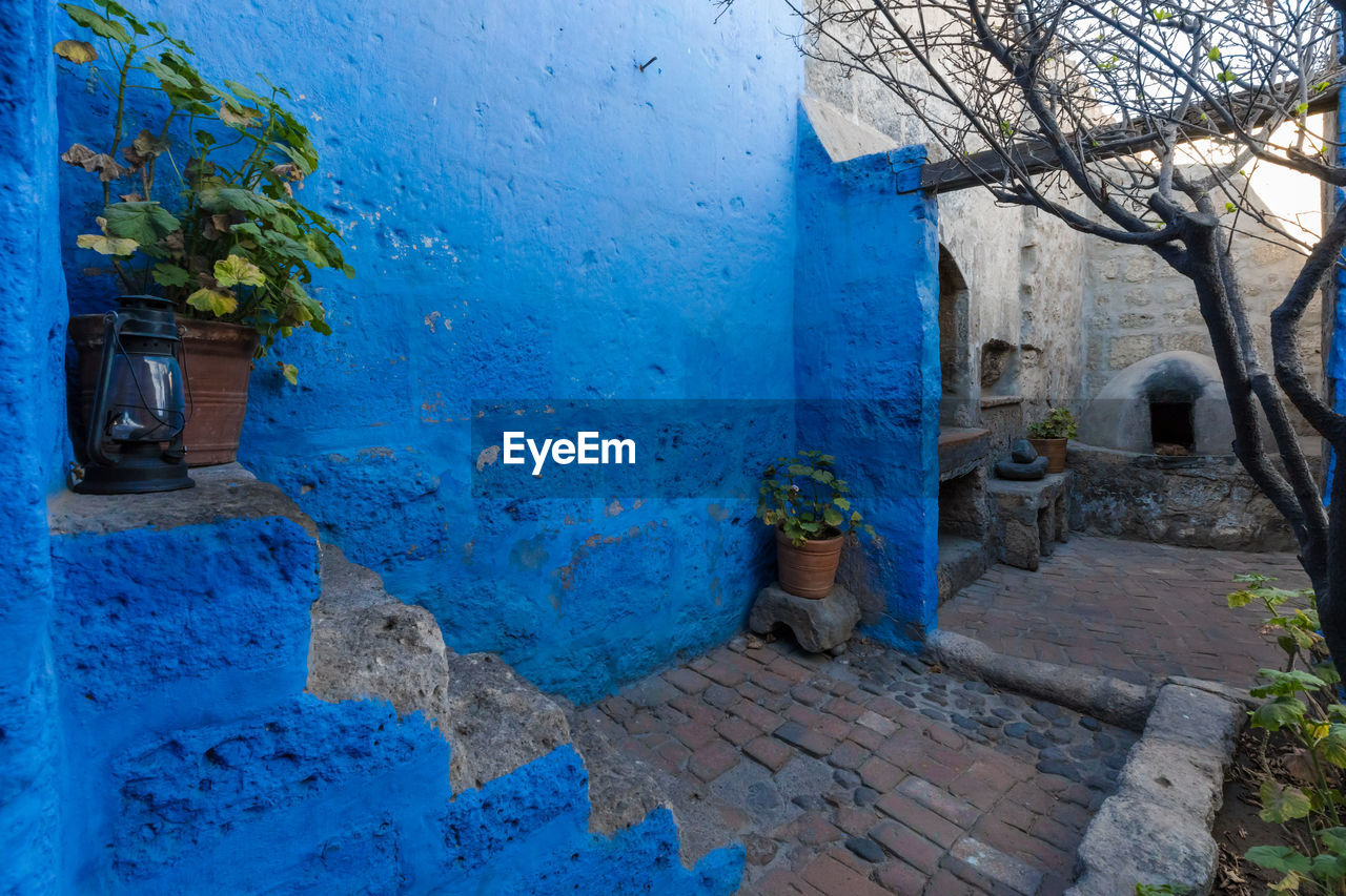 built structure, architecture, plant, blue, building exterior, building, no people, day, house, potted plant, nature, outdoors, staircase, tree, container, wall - building feature, door, wall, residential district, solid