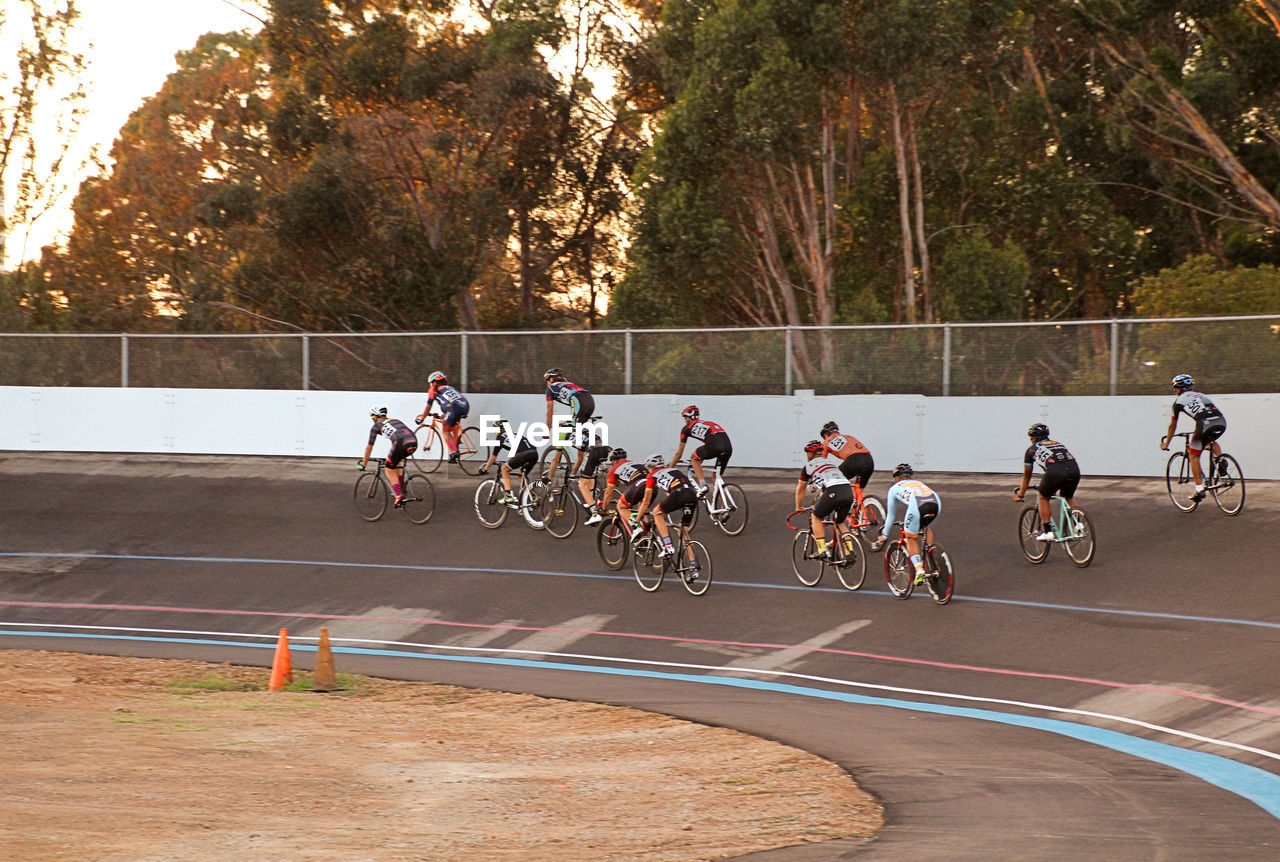 sports race, riding, competition, sports track, speed, large group of people, real people, competitive sport, men, tree, sport, outdoors, exercising, track and field athlete, sportsman, lifestyles, racing bicycle, day, track and field event, road, track and field stadium, sports clothing, mammal, adult, people, adults only