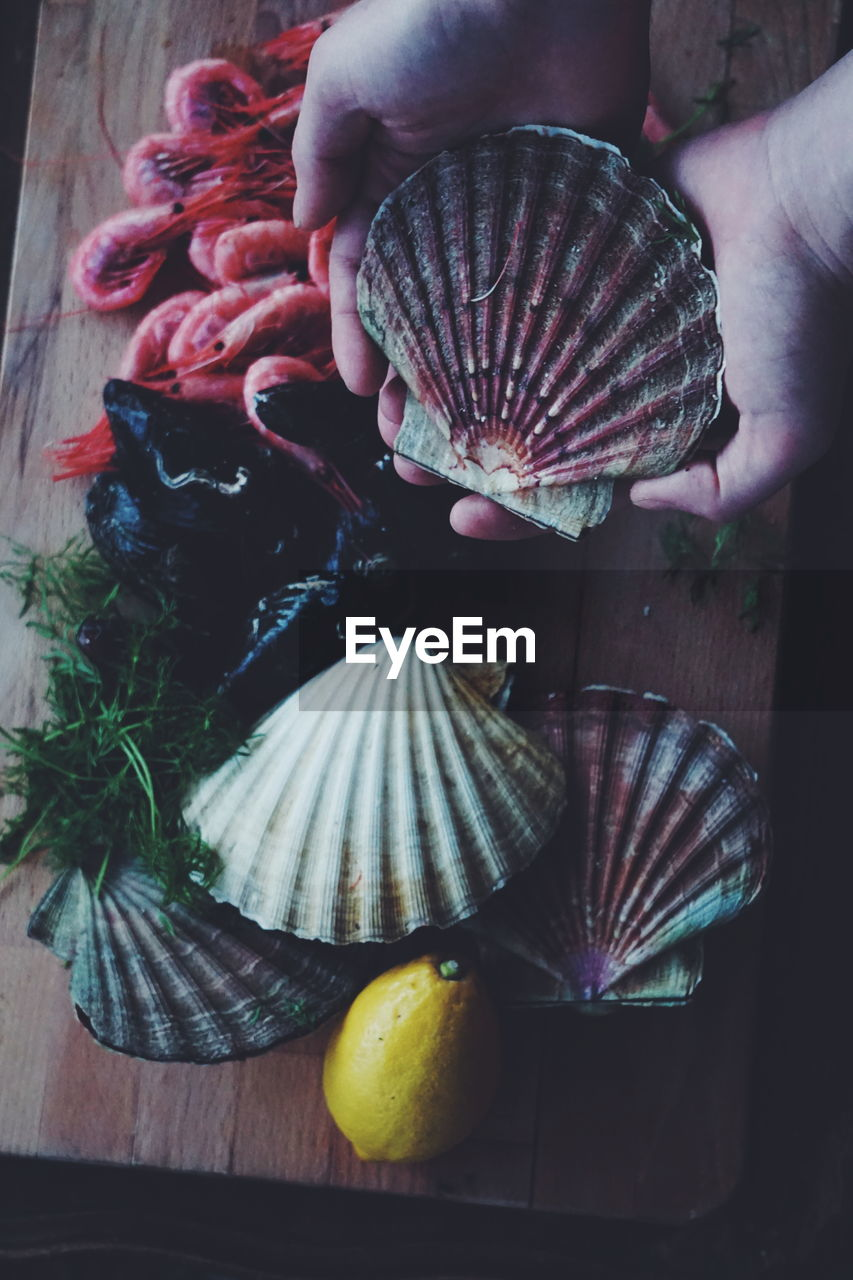Close-up of hand holding seashell on table