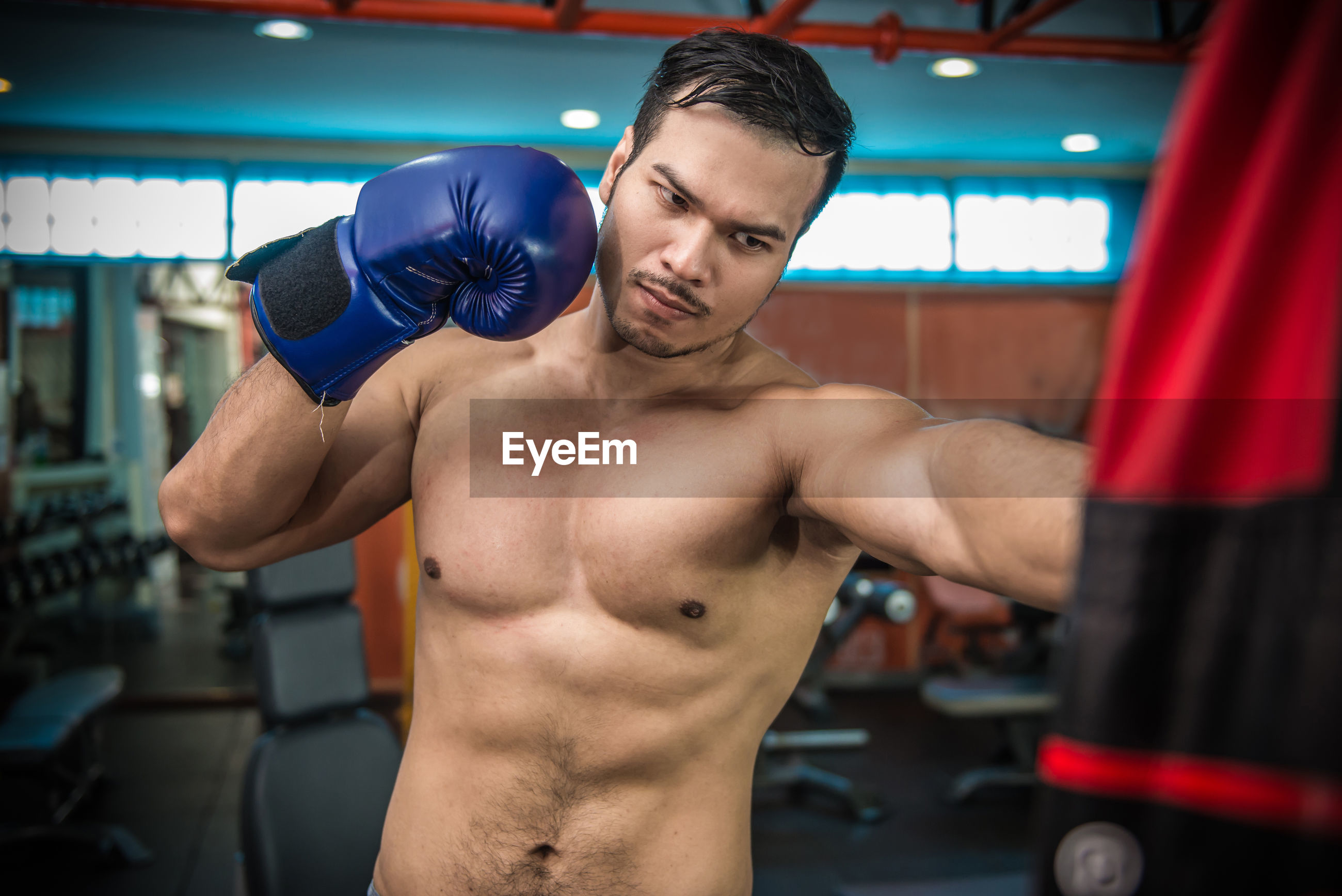 Shirtless muscular man exercising at gym