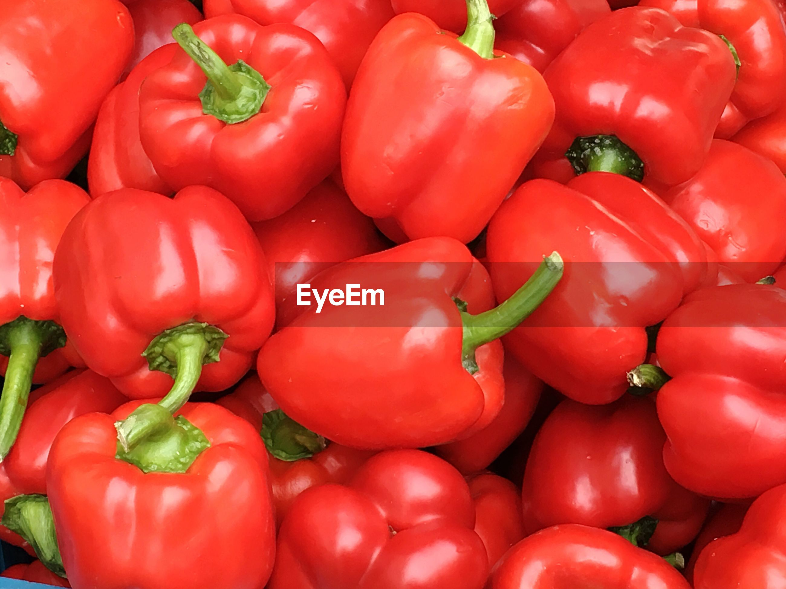 Full frame shot of tomatoes for sale