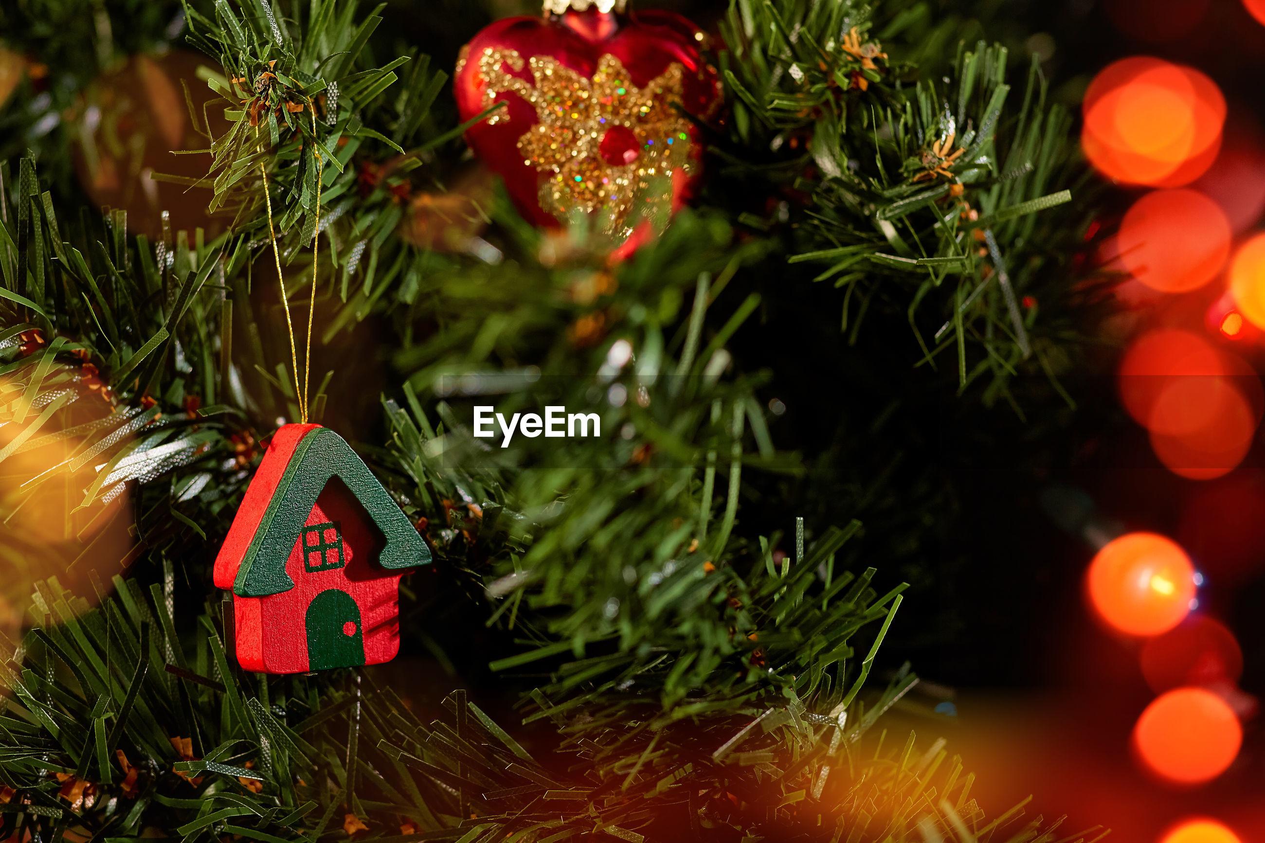 CLOSE-UP OF ILLUMINATED CHRISTMAS TREE ON BRANCH