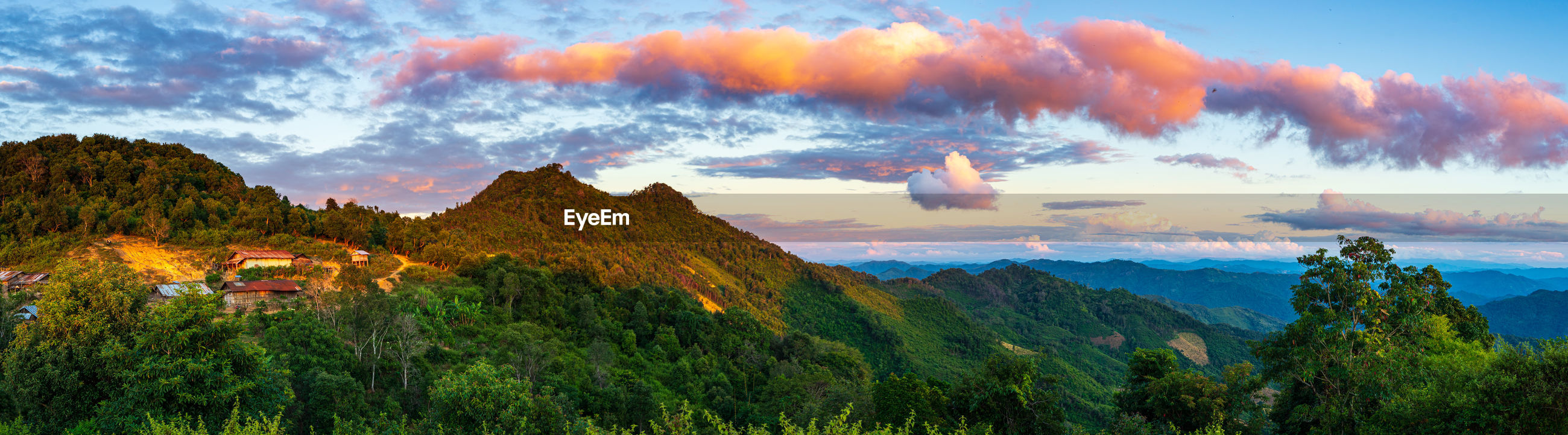 PANORAMIC VIEW OF TREES ON MOUNTAIN AGAINST SKY