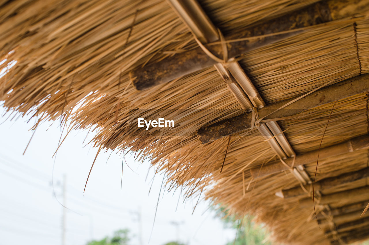 LOW ANGLE VIEW OF ROOF AGAINST PLANTS
