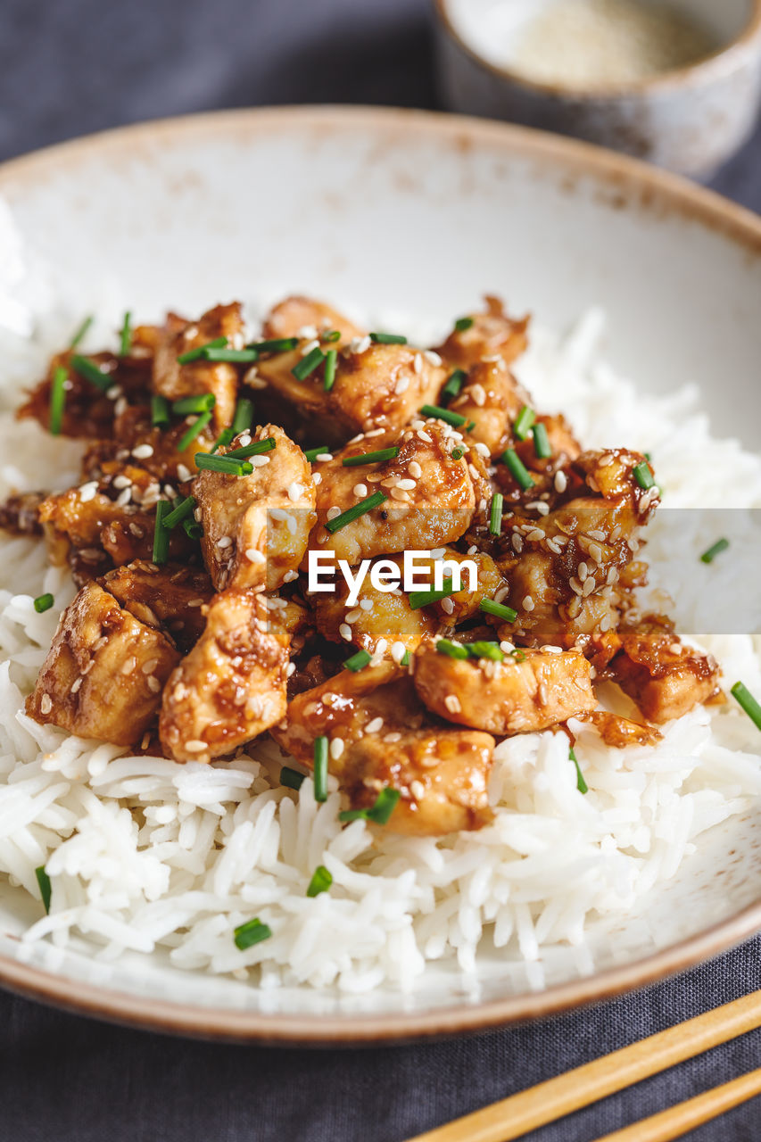food and drink, ready-to-eat, food, freshness, close-up, plate, meat, indoors, table, serving size, still life, chicken meat, rice - food staple, focus on foreground, wellbeing, chicken, no people, healthy eating, high angle view, bowl, white meat, crockery, fried chicken