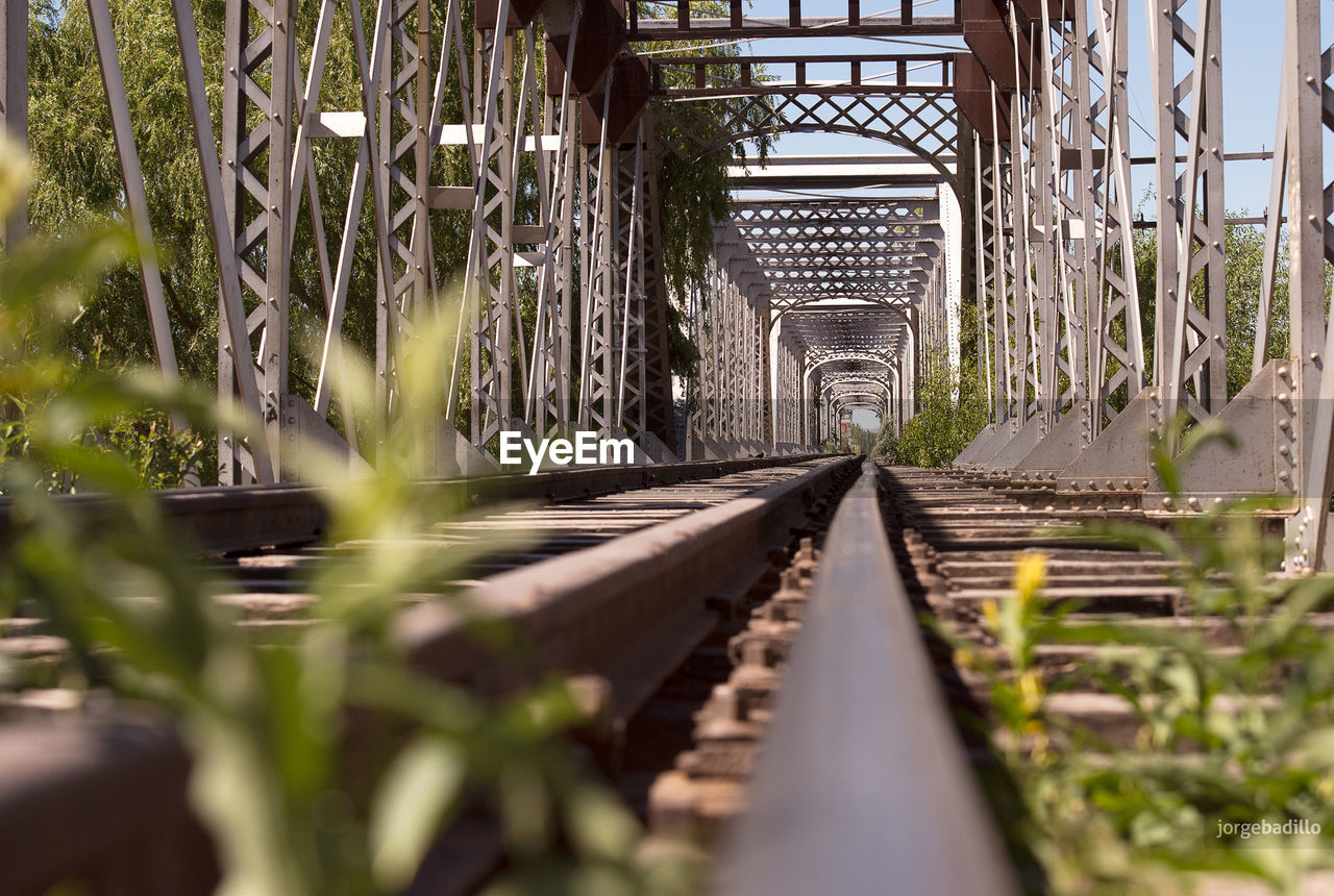 rail transportation, track, railroad track, plant, the way forward, selective focus, no people, nature, direction, day, diminishing perspective, growth, metal, architecture, built structure, transportation, outdoors, focus on background, connection, surface level