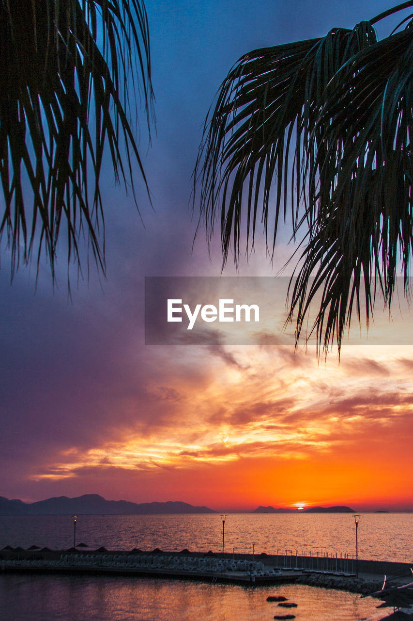 sky, sunset, water, sea, beauty in nature, scenics - nature, tranquility, nature, cloud - sky, silhouette, tranquil scene, palm tree, tree, no people, orange color, beach, tropical climate, land, plant, horizon over water, outdoors, palm leaf