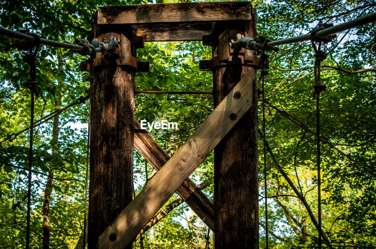tree, plant, low angle view, wood - material, no people, day, green color, nature, forest, growth, land, outdoors, tree trunk, trunk, focus on foreground, rope, branch, metal, tranquility, security