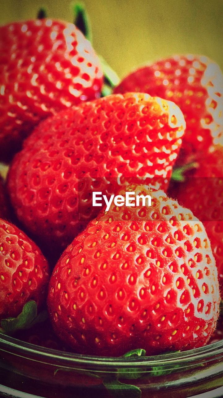 fruit, food and drink, red, food, strawberry, freshness, close-up, sweet food, indoors, healthy eating, no people, dessert, ready-to-eat, day