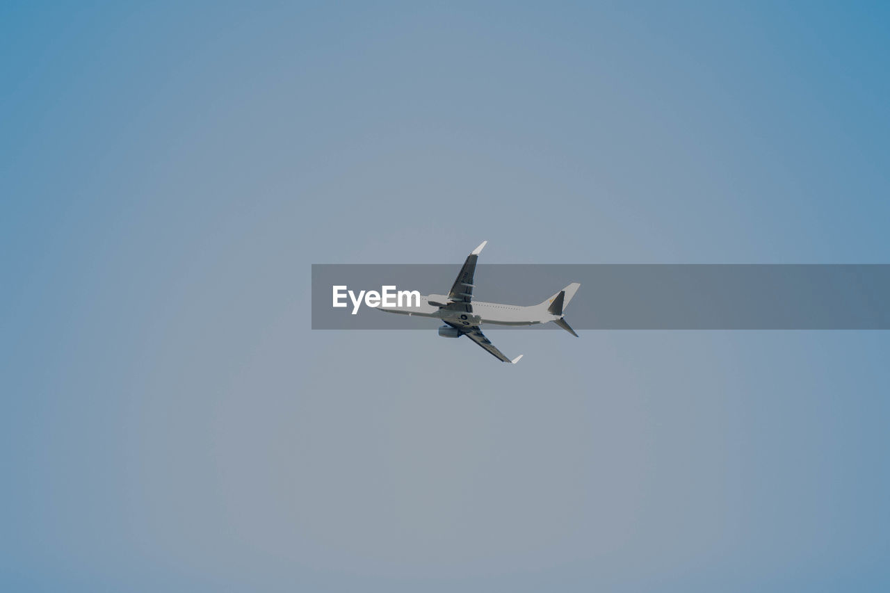 flying, sky, low angle view, mid-air, air vehicle, mode of transportation, clear sky, spread wings, airplane, no people, copy space, animals in the wild, animal wildlife, motion, blue, transportation, day, nature, bird, military, plane