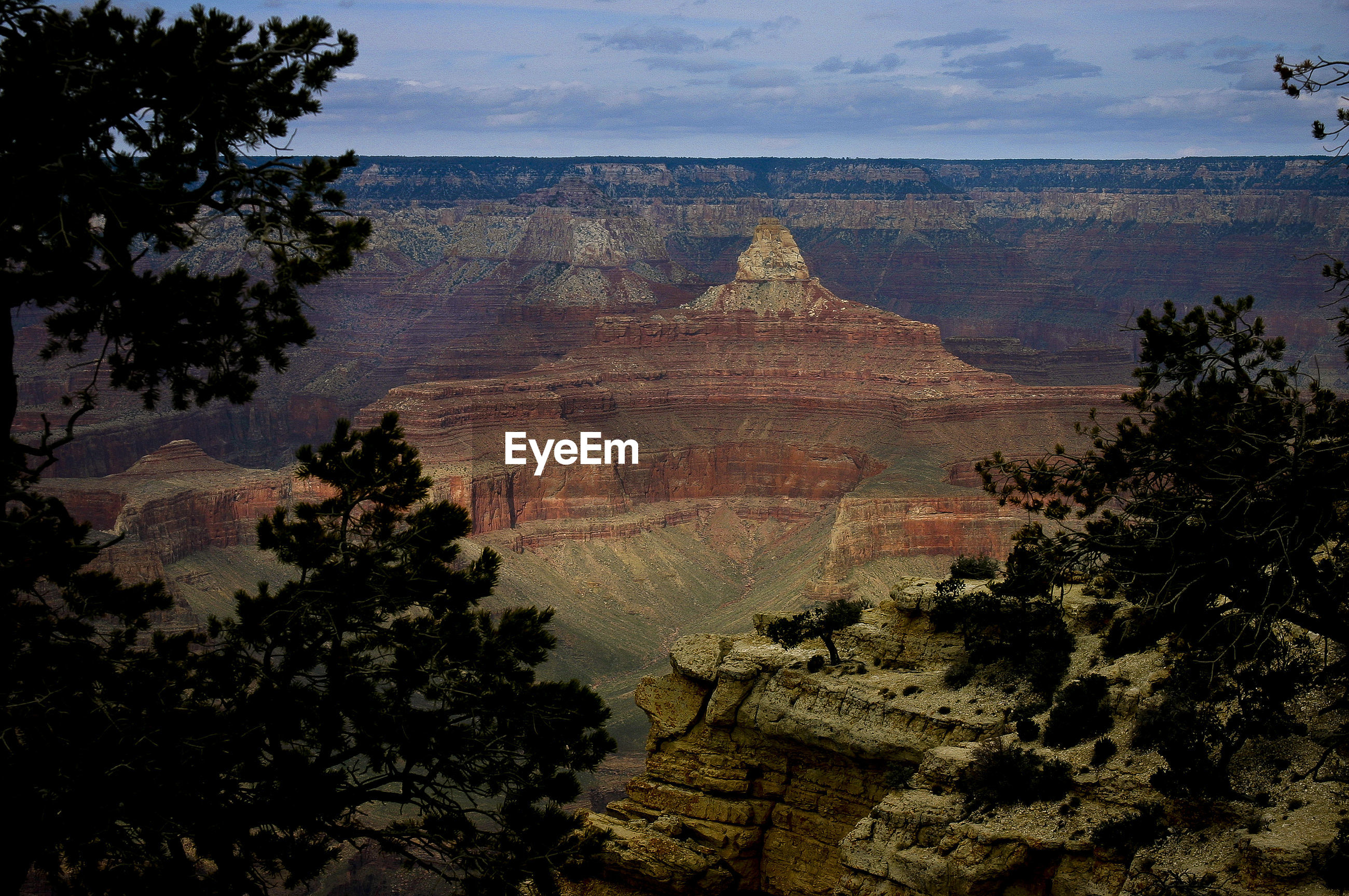 Majestic view of grand canyon national park