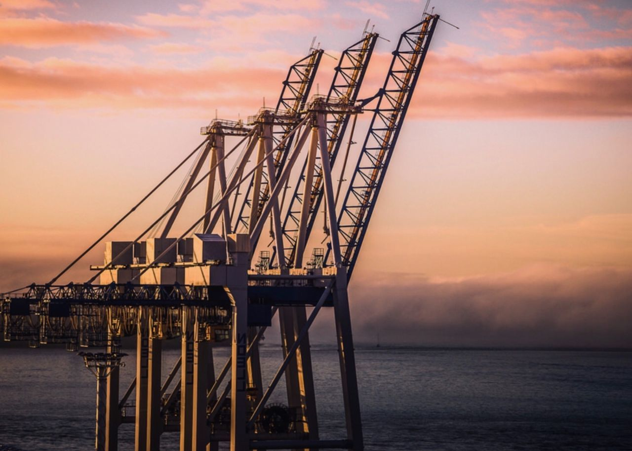 Cranes By Sea During Sunset