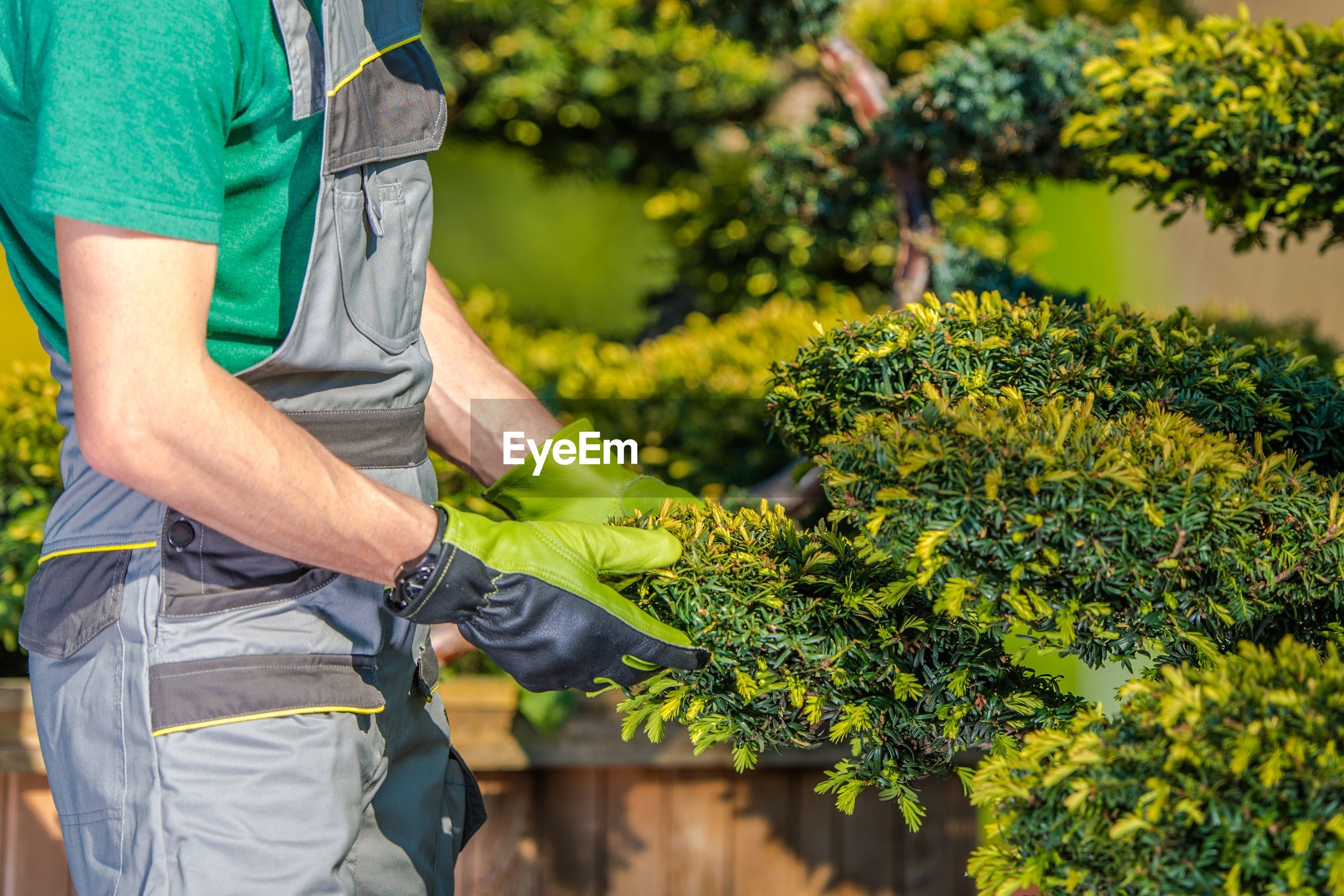 Midsection of man gardening in yard