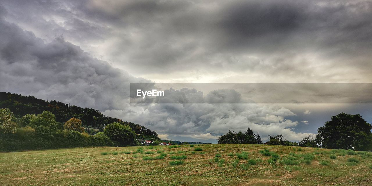 cloud - sky, sky, plant, beauty in nature, tree, landscape, environment, scenics - nature, tranquil scene, tranquility, no people, field, land, nature, day, non-urban scene, overcast, growth, storm, outdoors, ominous